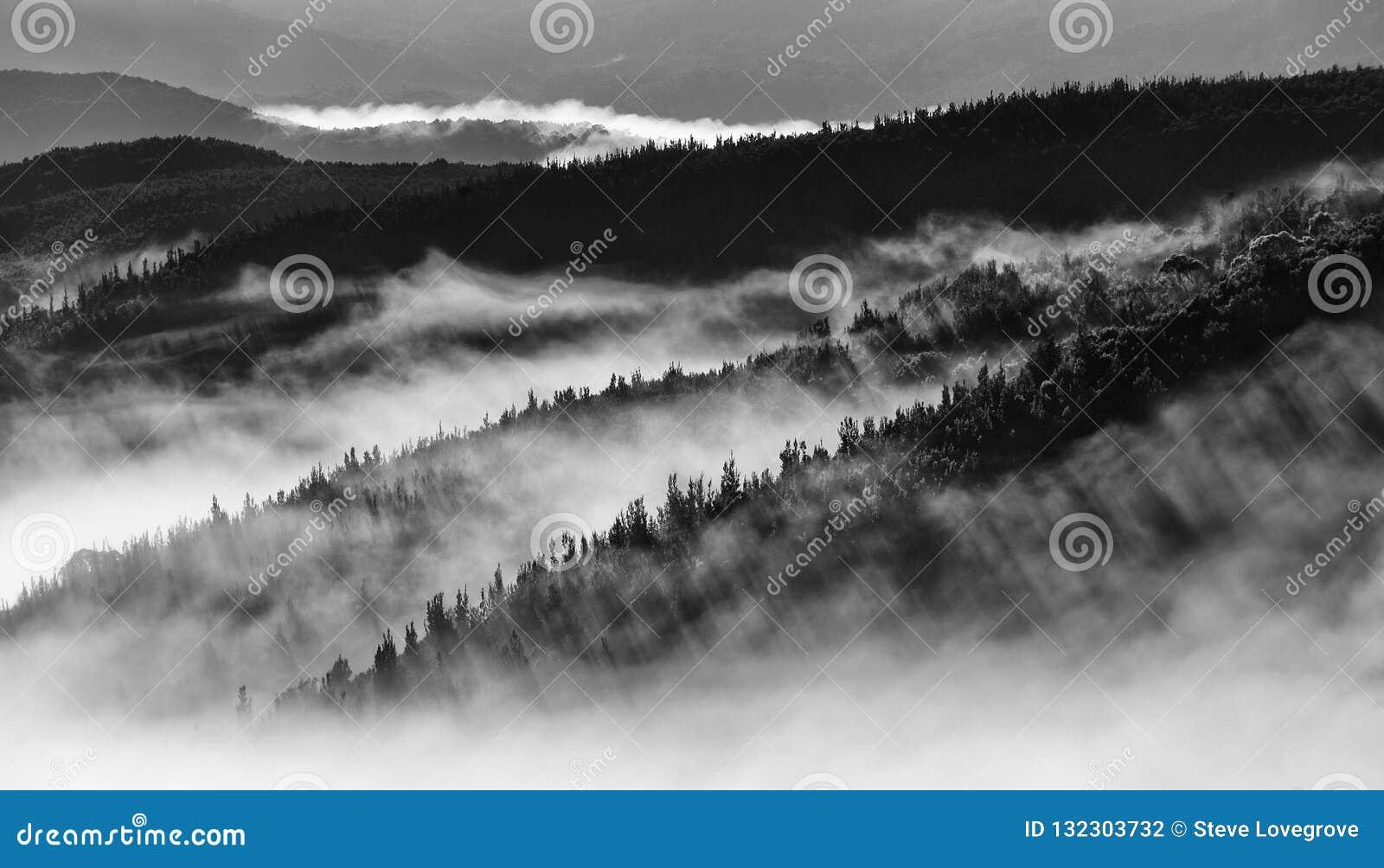 Черно-белое изображение ландшафта холмов