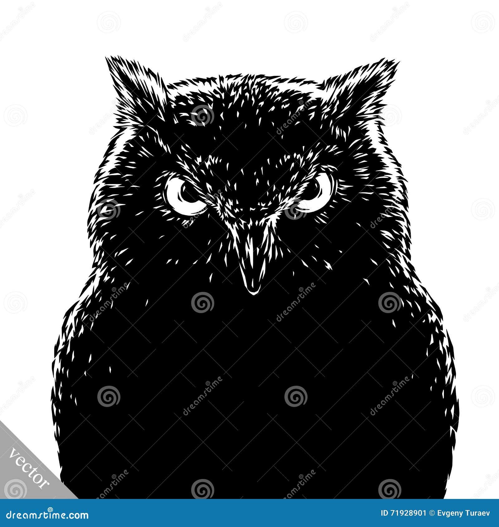 Черно-белый выгравируйте злую птицу сыча вектора