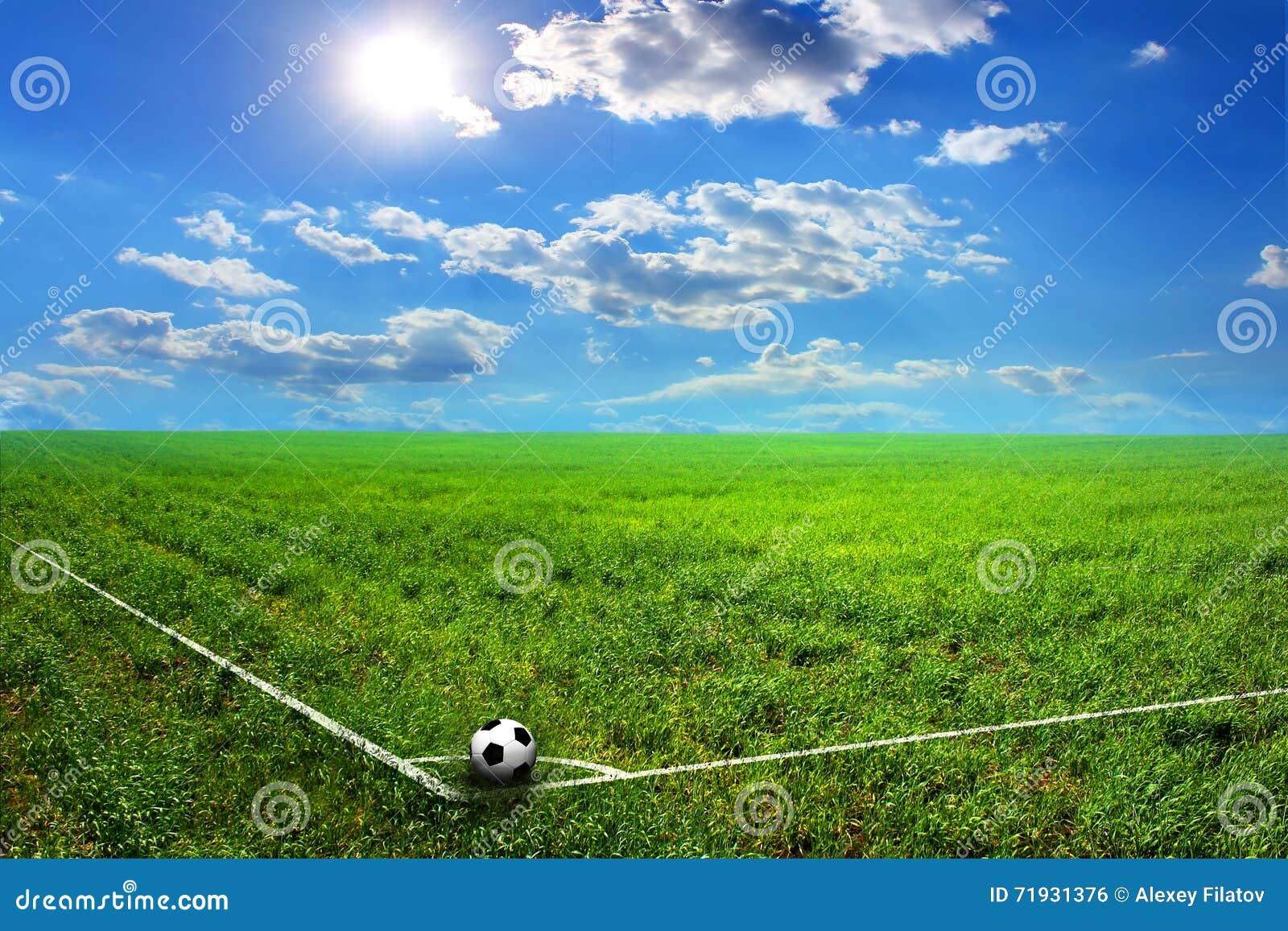 Черно-белый футбольный мяч на поле