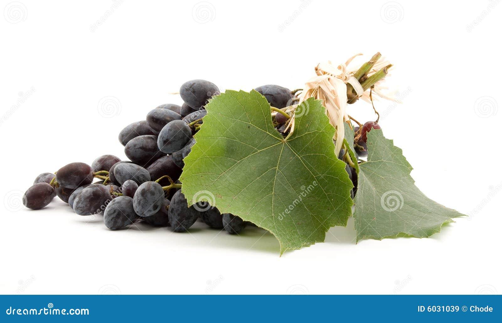 черные виноградины