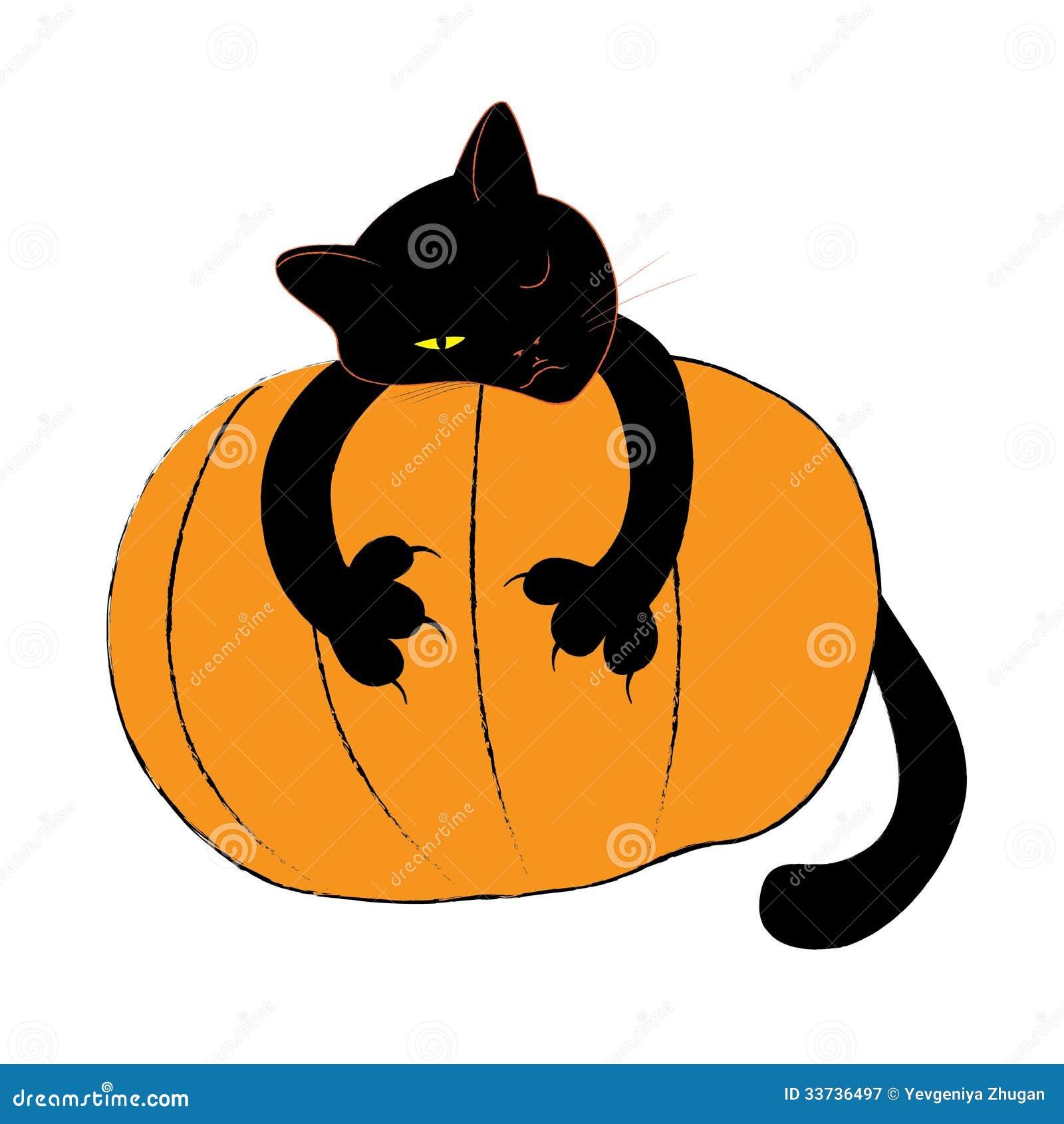 Черный кот хеллоуина