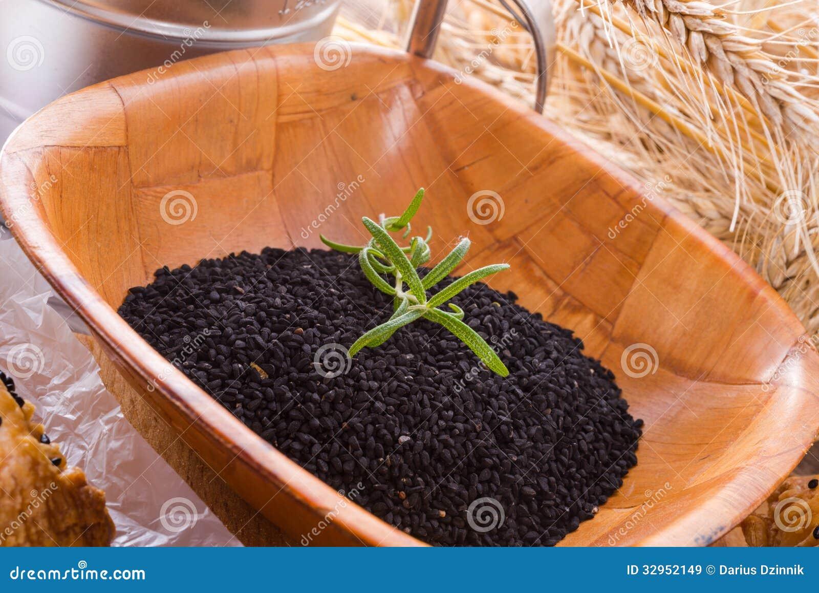 Черный тимон (Nigella sativa)