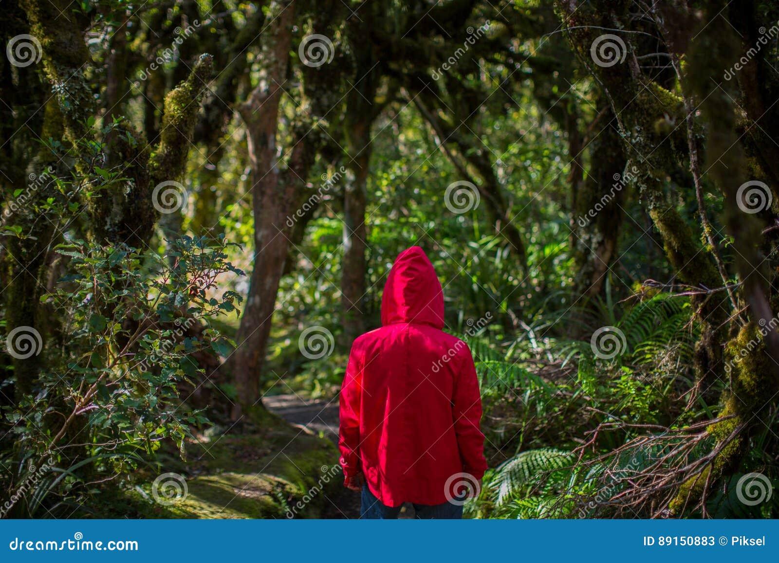 Человек в лесе, Новой Зеландии