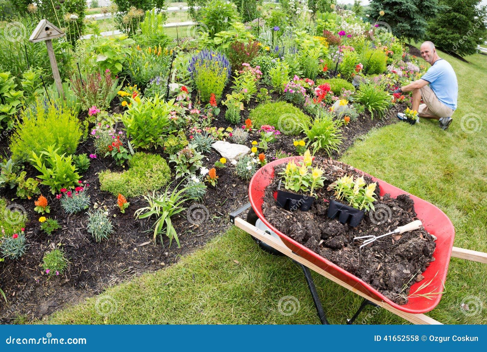 Человек засаживая в саде