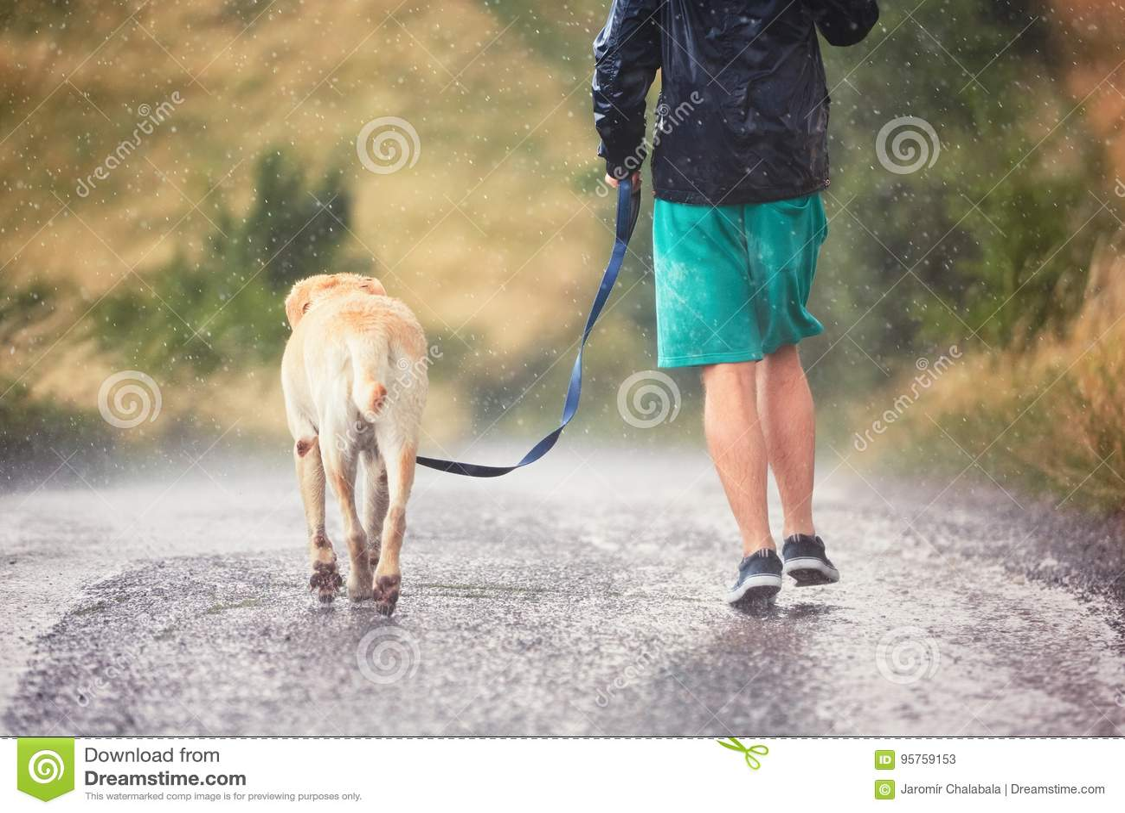 Человек с собакой в проливном дожде