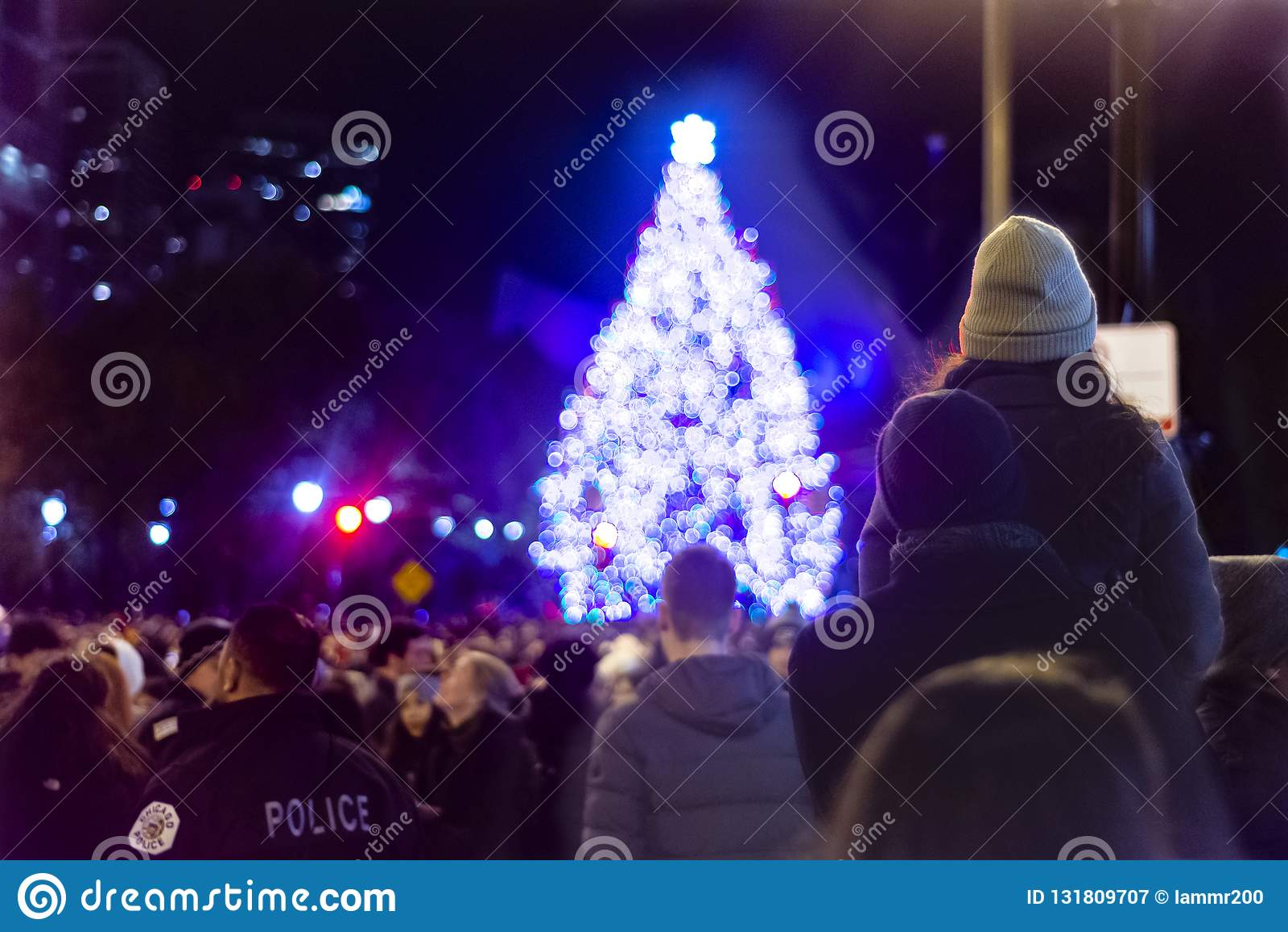 Чикаго, IL, Соединенные Штаты - 16-ое ноября 2018: Пары смотря рождественскую елку после 105th ежегодной рождественской елки Чика