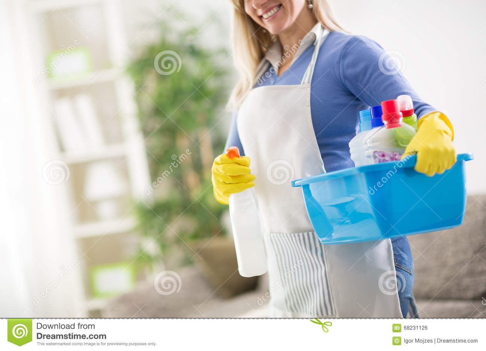 Чистящие средства дома владением горничной