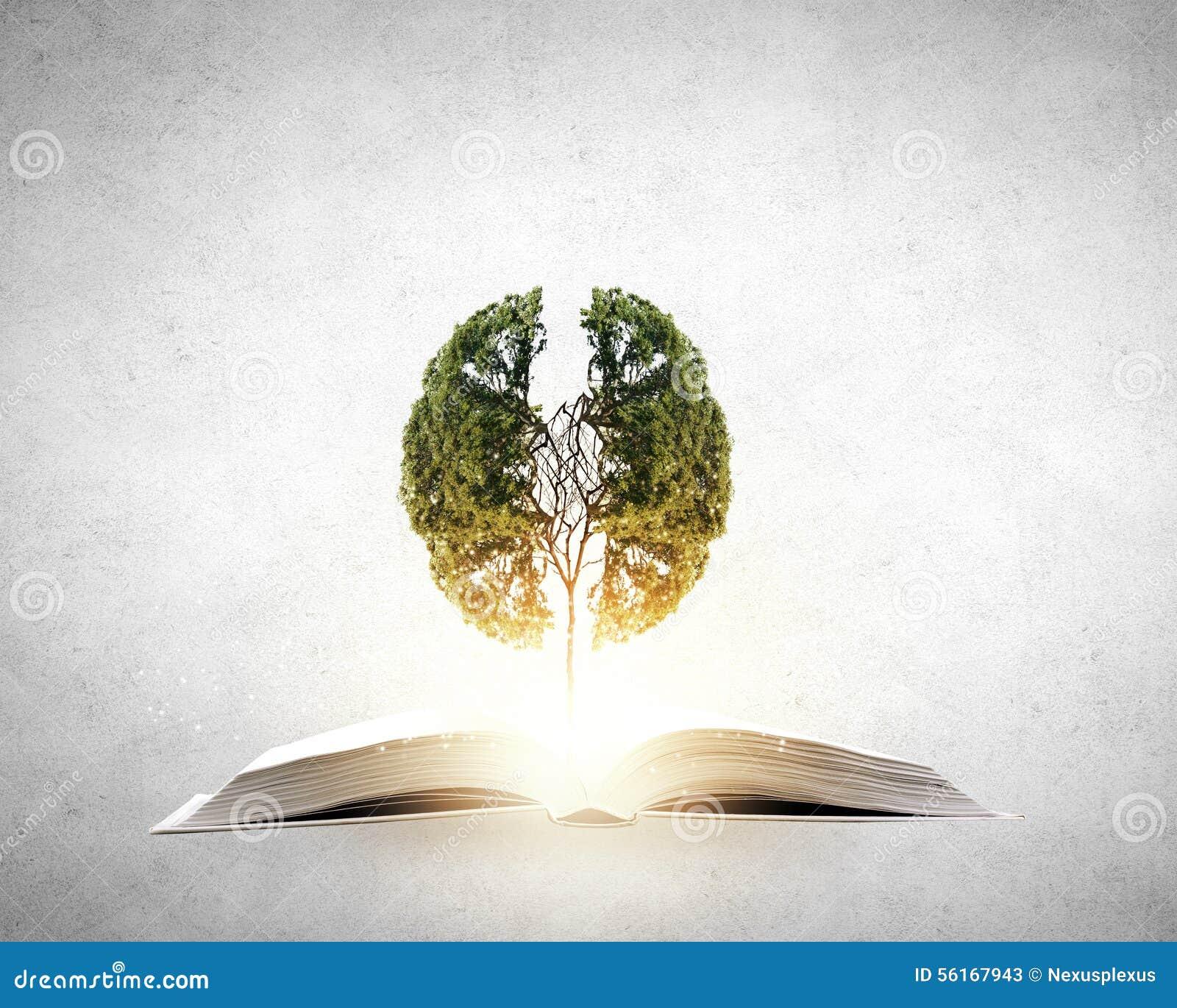Чтение начинает воображение