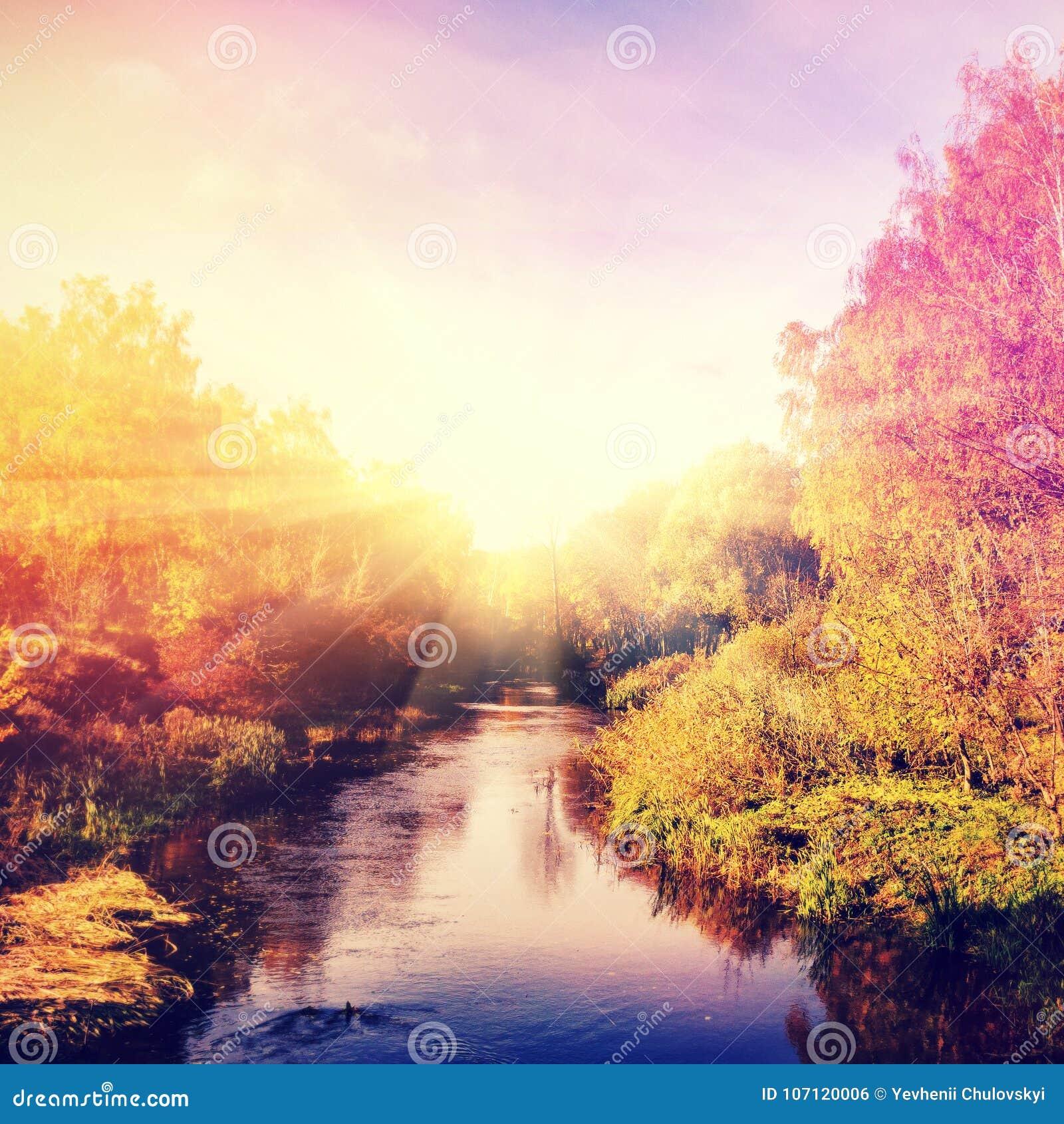 Чудесный ландшафт с деревьями осени в лесе, над рекой