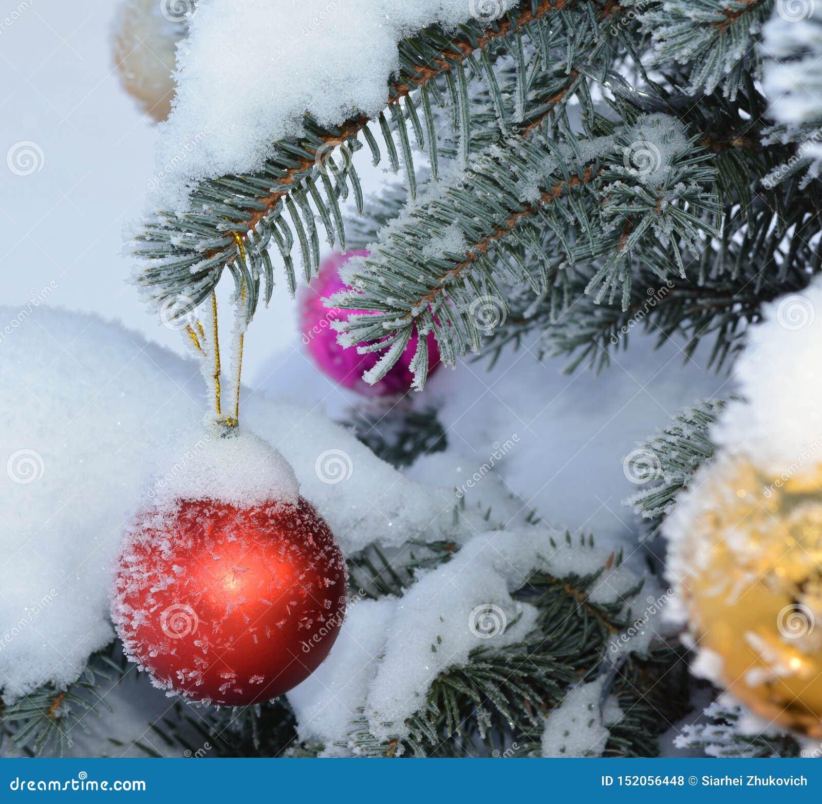 Шарики Нового Года на ели в реальном маштабе времени с заморозком и снегом