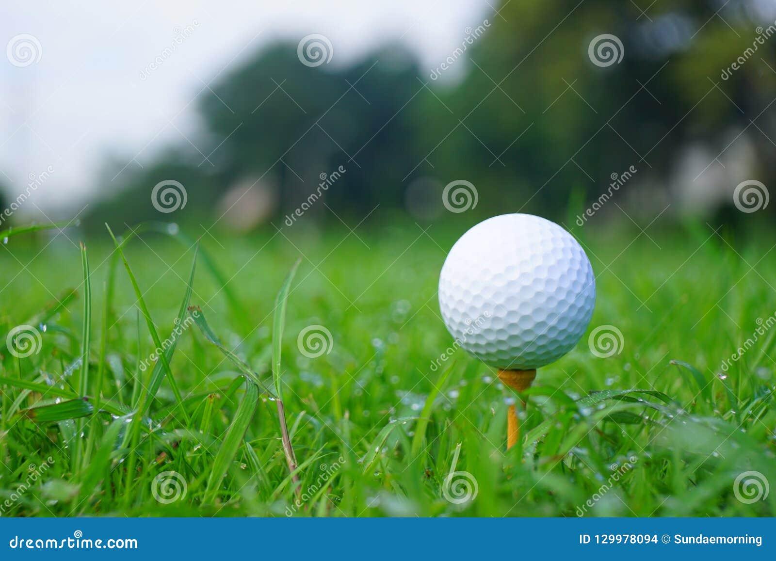 Шар для игры в гольф и тройник с предпосылкой курса золота готовой к тройнику