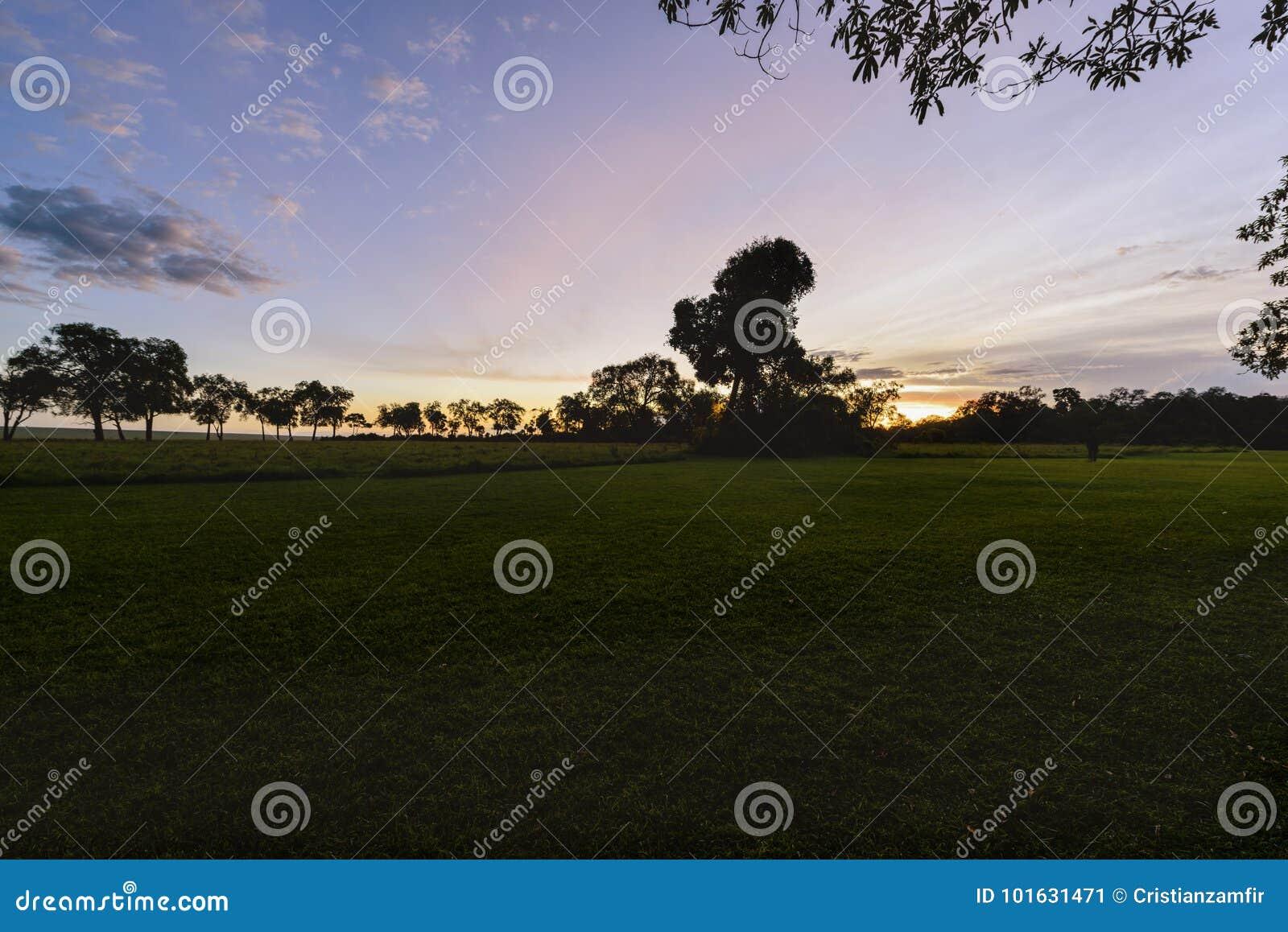 Шикарный восход солнца в Африке, сафари