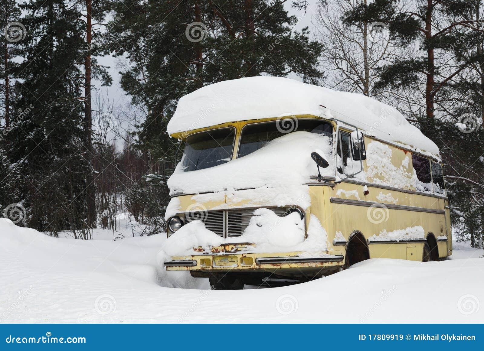 шина покрыла старую зиму vinage снежка