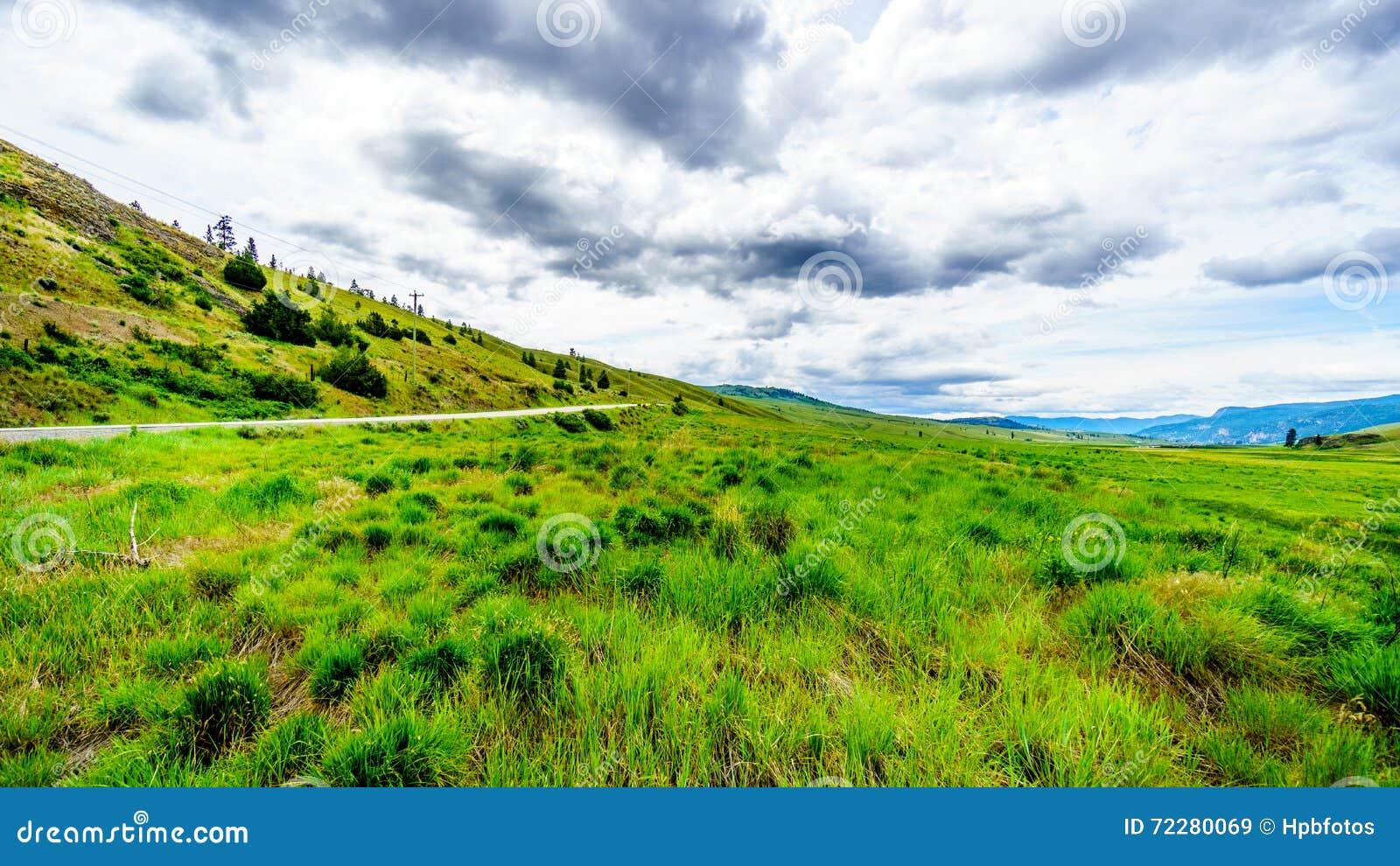 Download Широкие открытые злаковики и Rolling Hills долины Nicola Стоковое Изображение - изображение насчитывающей дорога, облака: 72280069