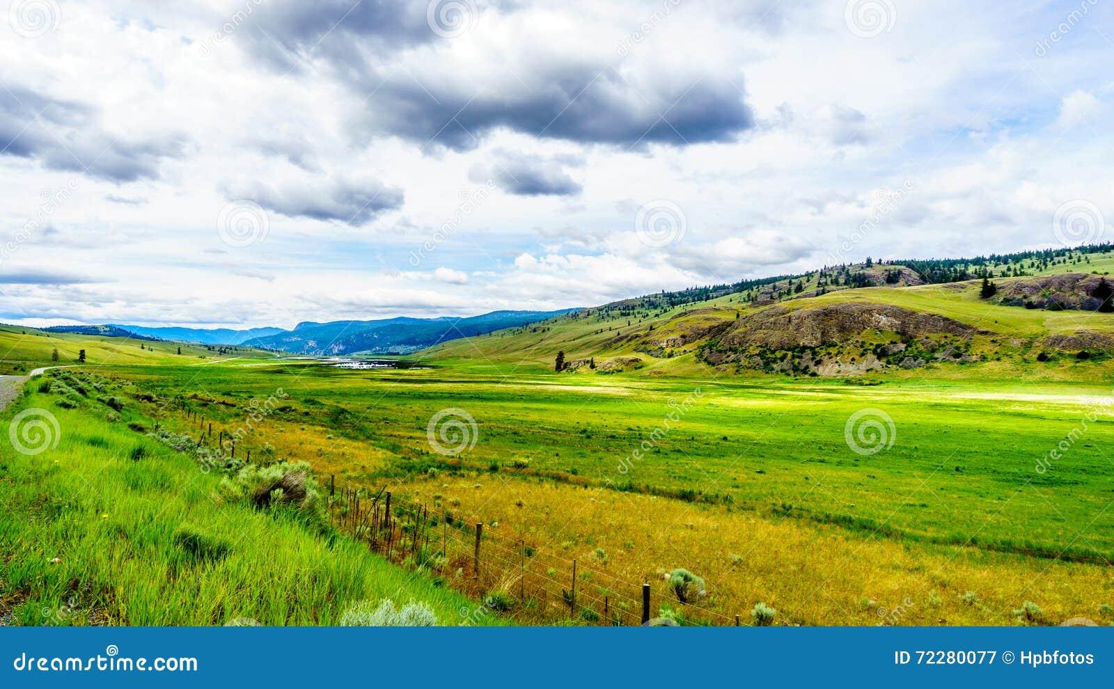 Download Широкие открытые злаковики и Rolling Hills долины Nicola Стоковое Изображение - изображение насчитывающей поля, завальцовка: 72280077