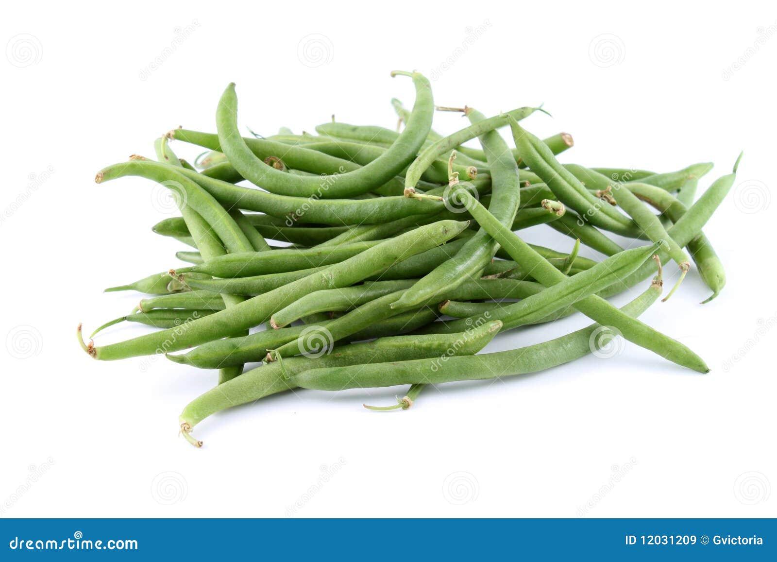 шнур фасолей зеленый