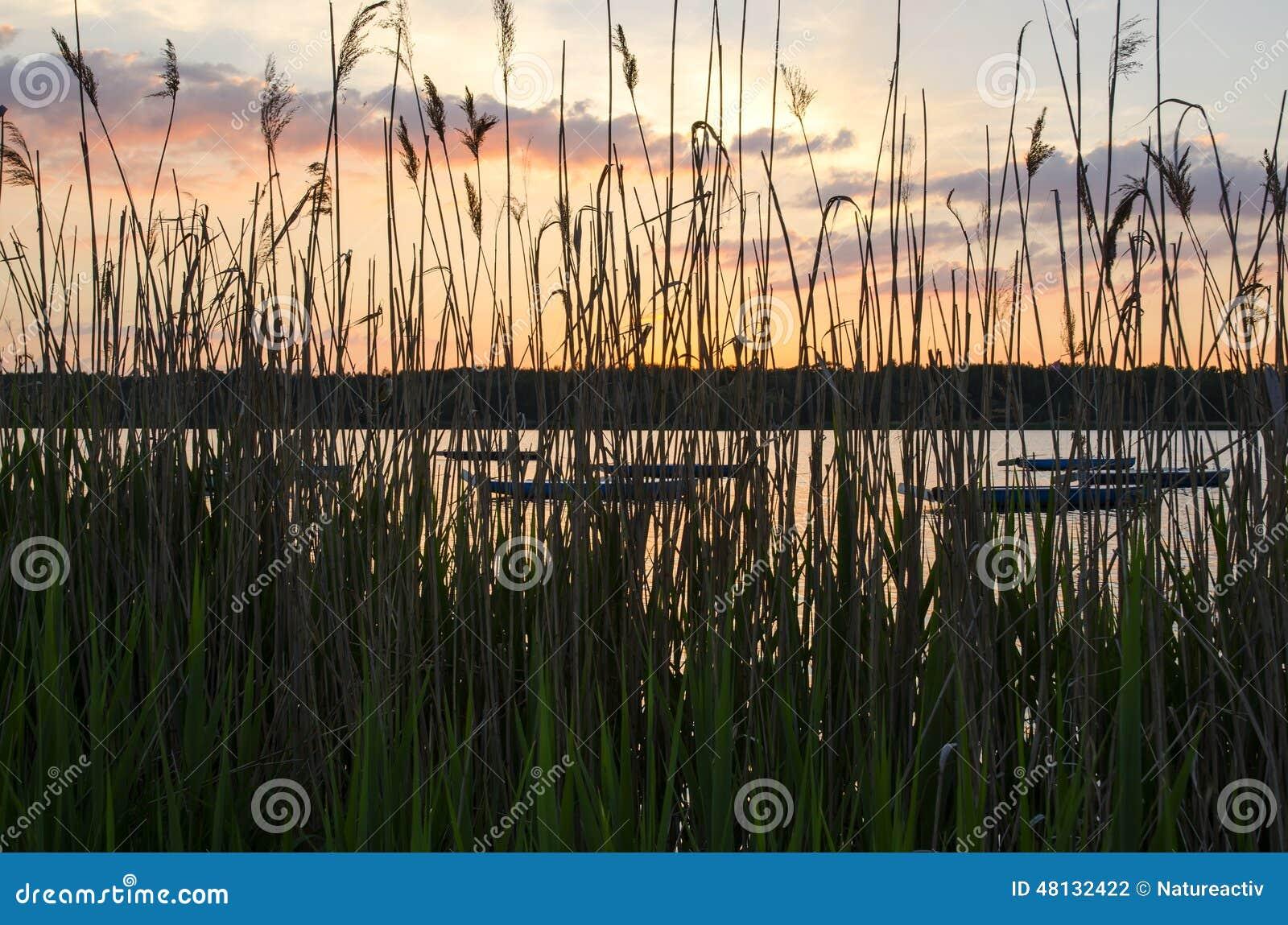 Шлюпки в озере
