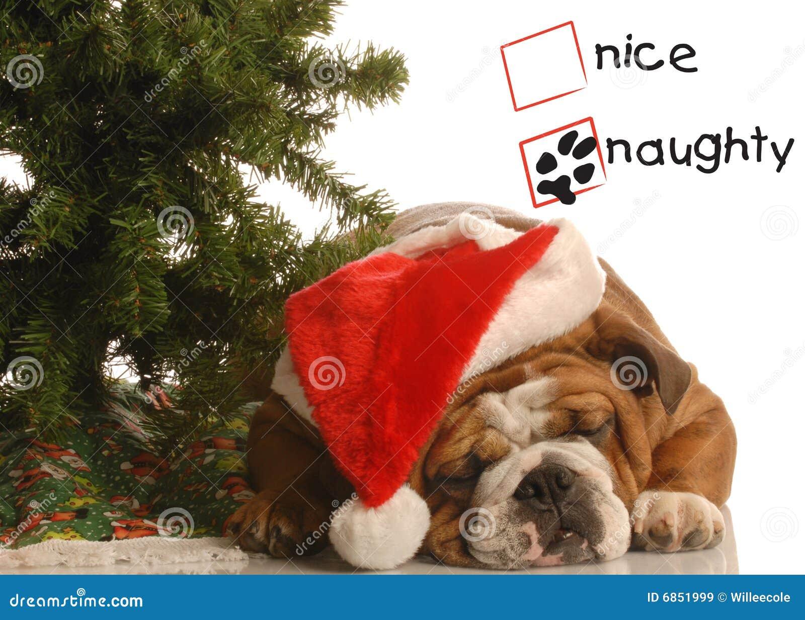 щенок рождества непослушный