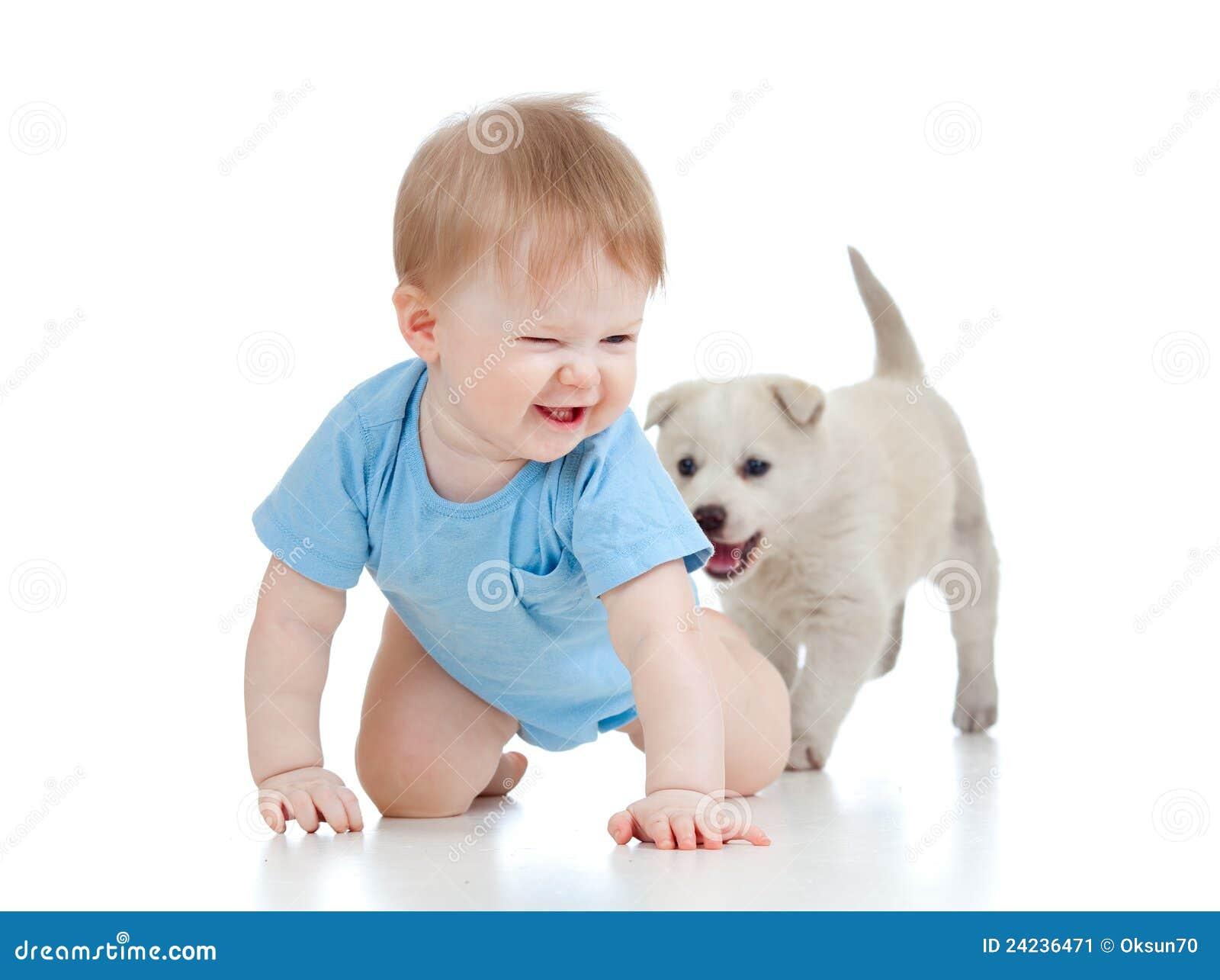 щенок pupp отсутствующего ребенка вползая милый играя
