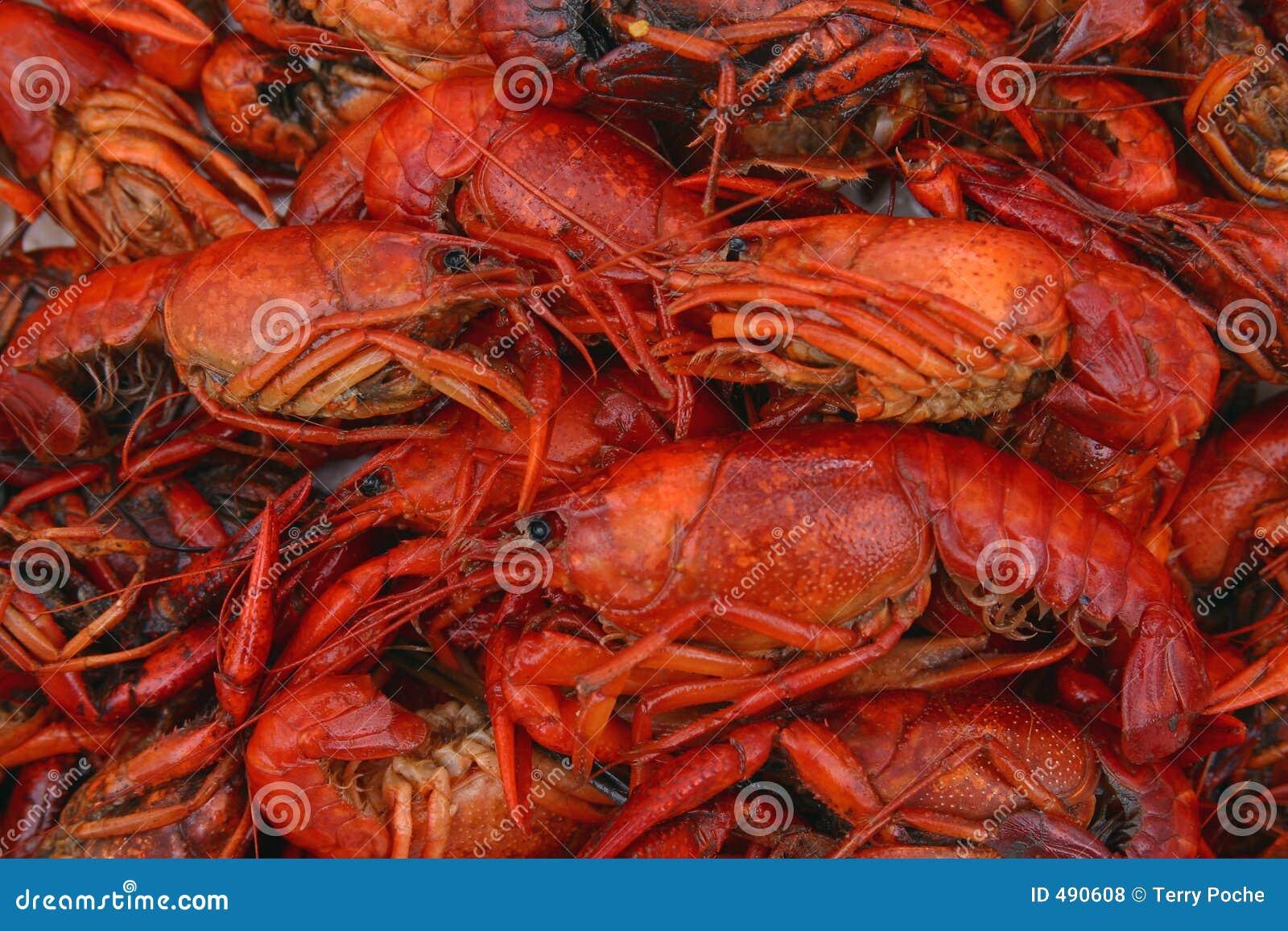 ые близкие crawfish вверх