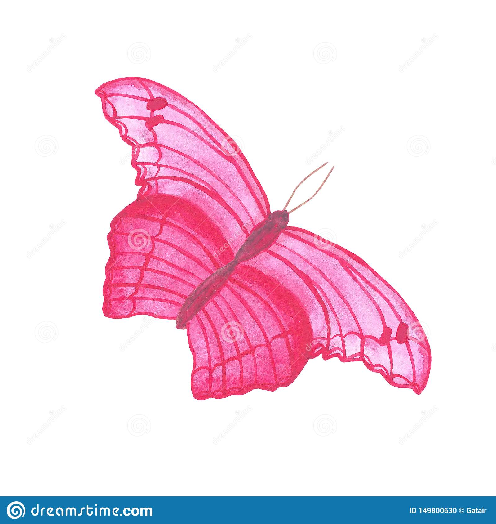 Экзотическое лета насекомого бабочки пинка летания акварели тропическое