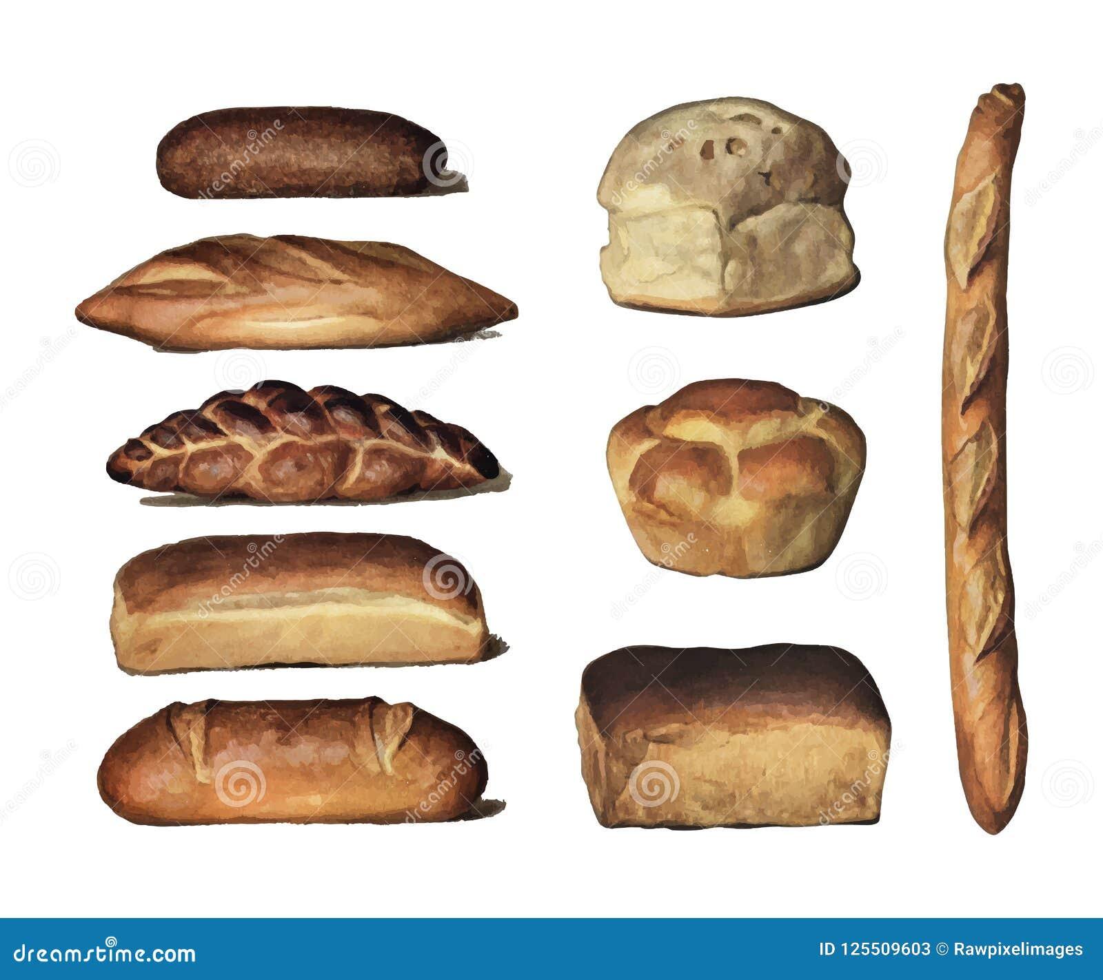 Энциклопедия 1911 ` s бакалейщика, винтажное собрание различных типов испеченных хлебцев хлеба Цифров увеличенное rawpixel