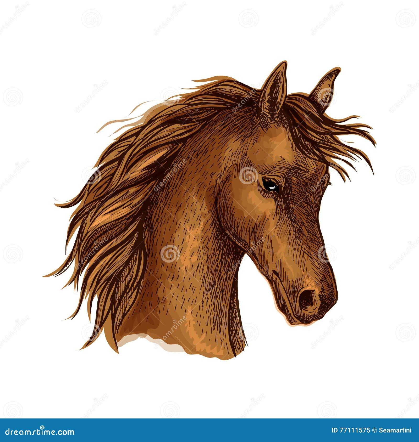 Эскиз лошади Брайна аравийский для equine дизайна спорта