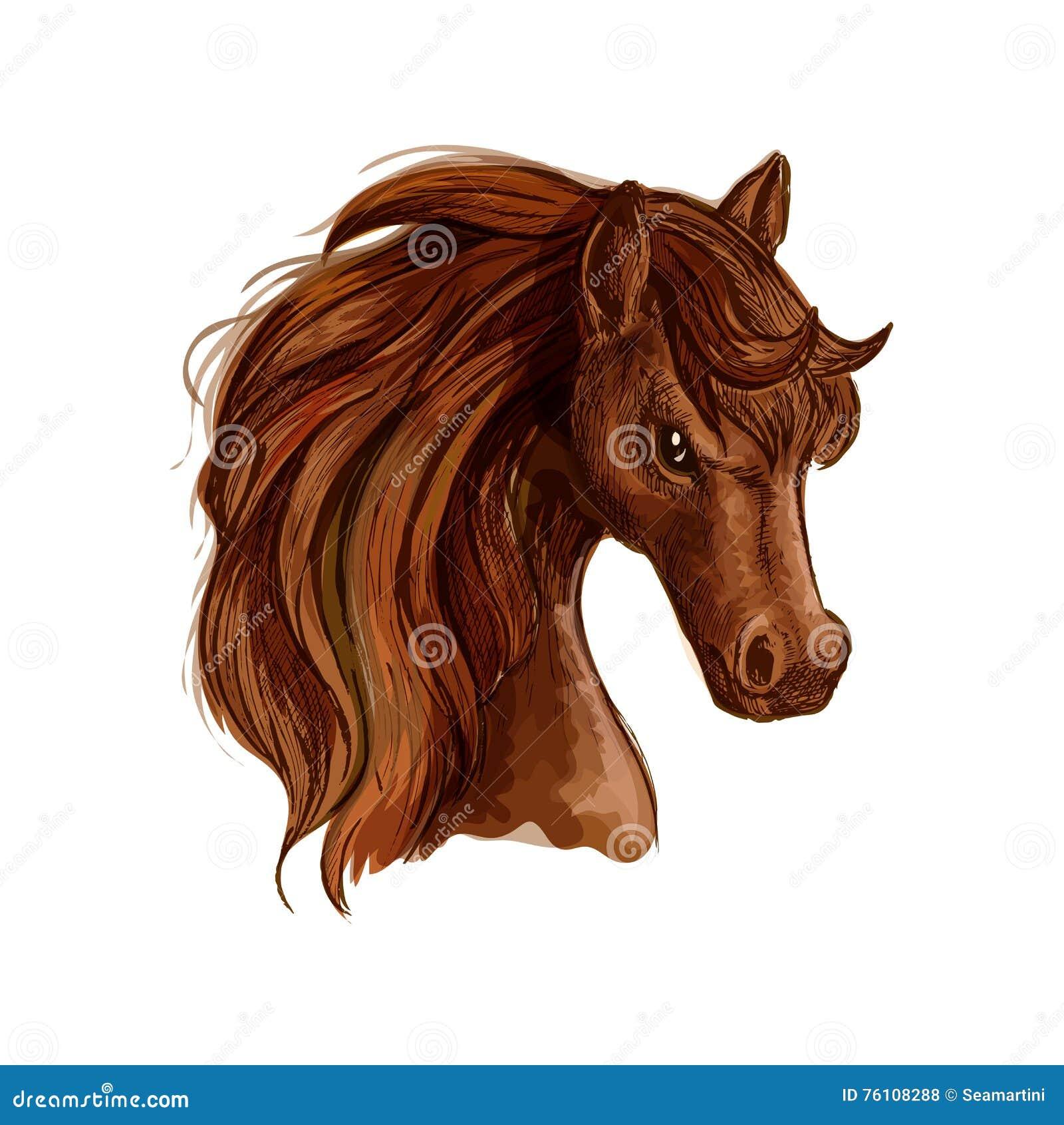 Эскиз лошади конематки Брайна аравийский для equine дизайна