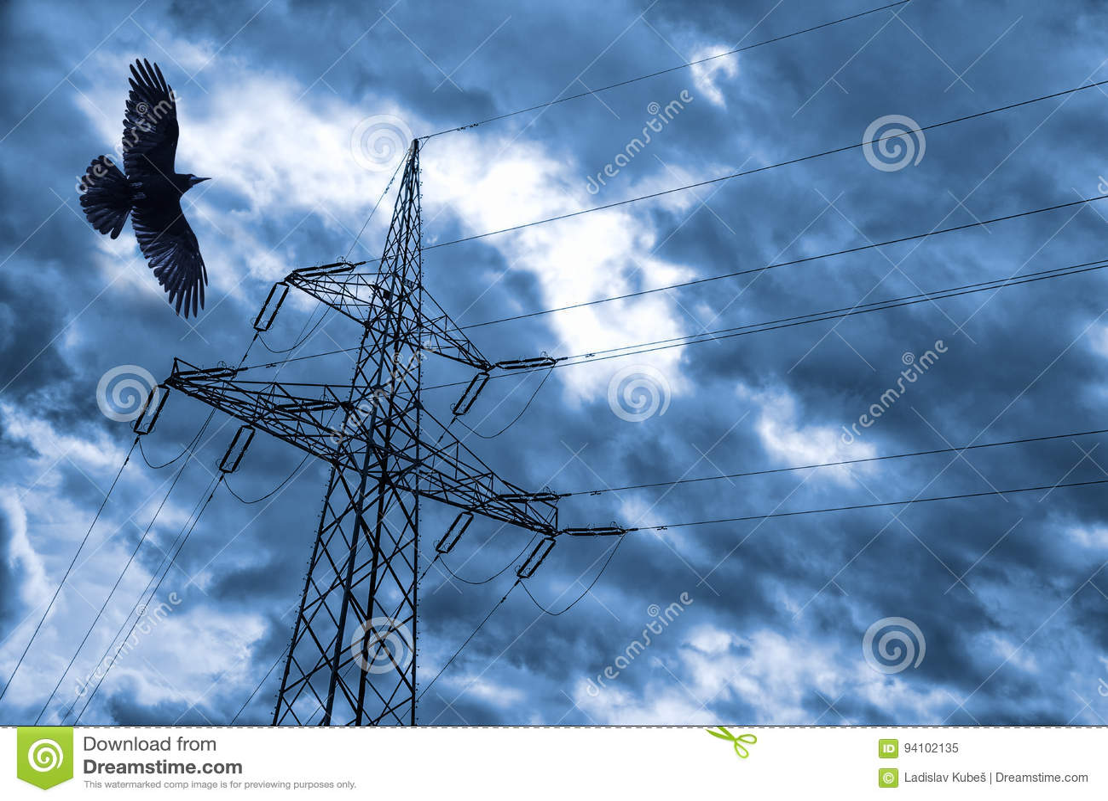 Электрический поляк с вороном