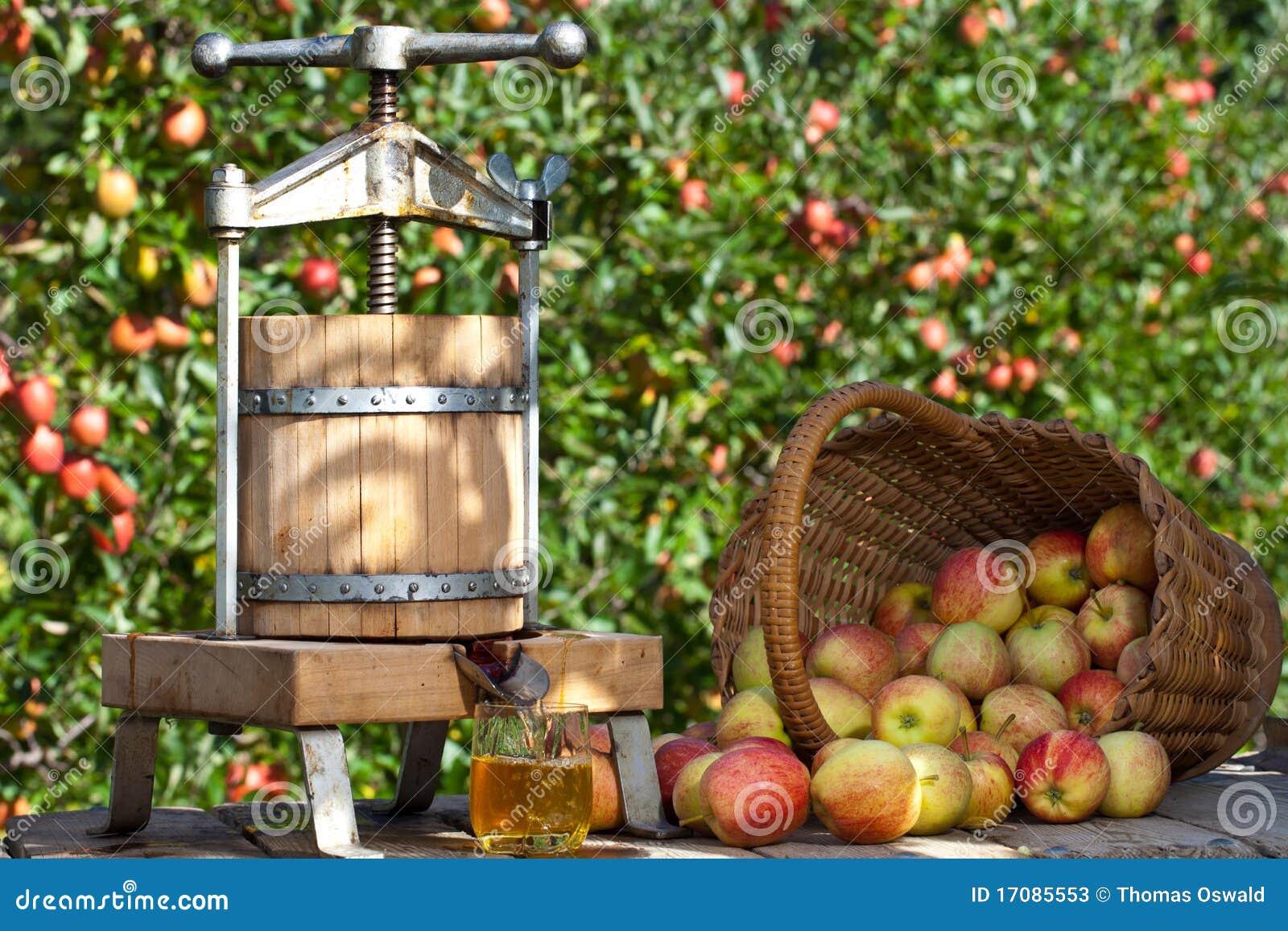 яблока сжатый сок свеже