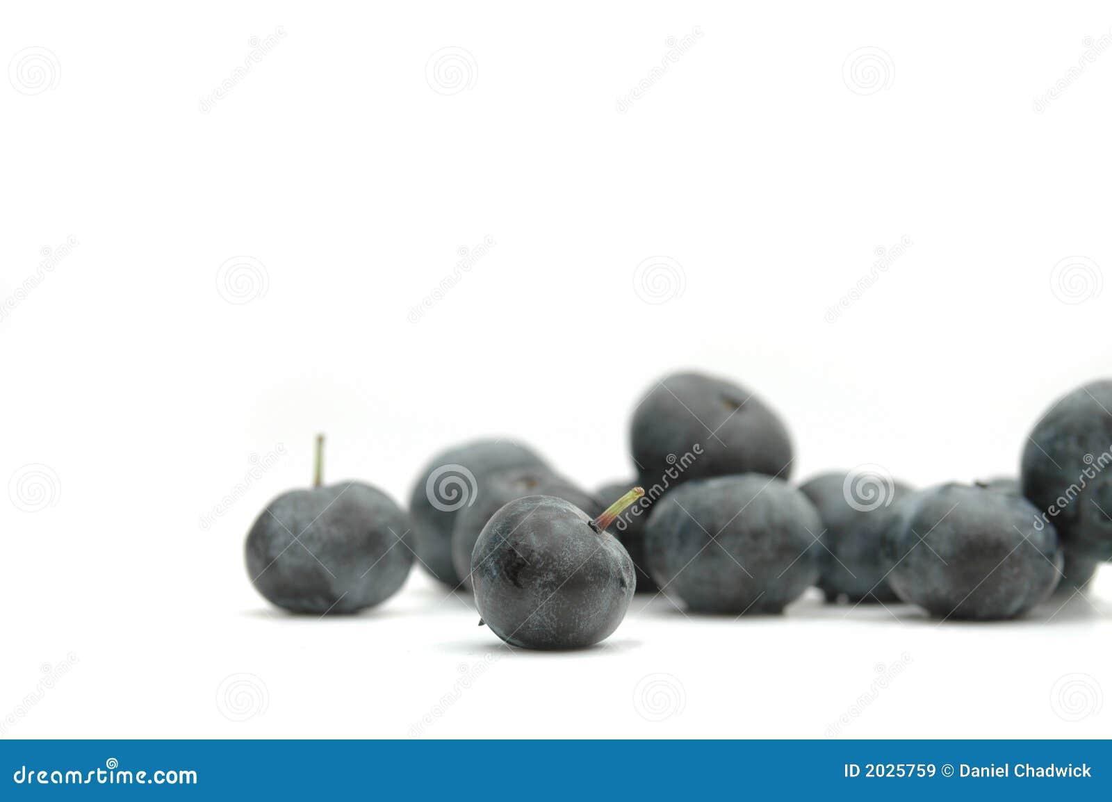 ягоды голубые