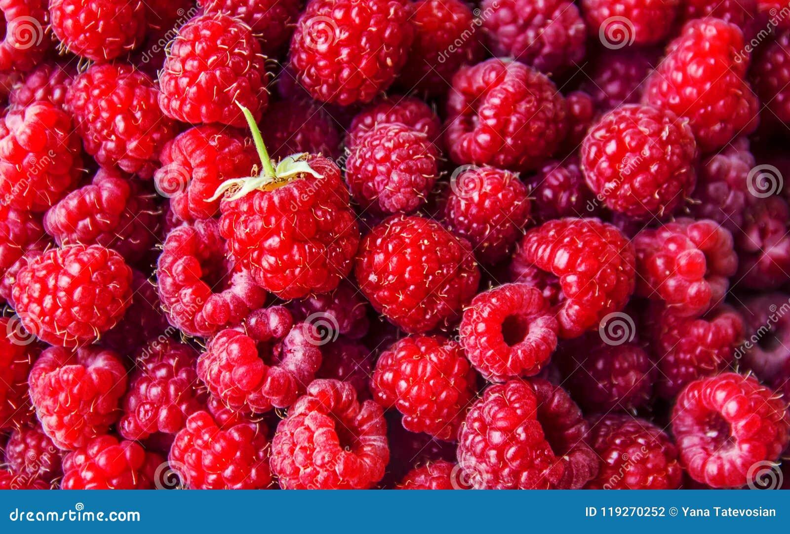 ягоды поленики дом Селективный фокус