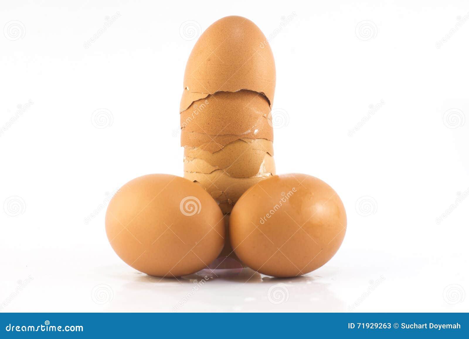 Яичка как пенис и тестикулы изолированные на белизне