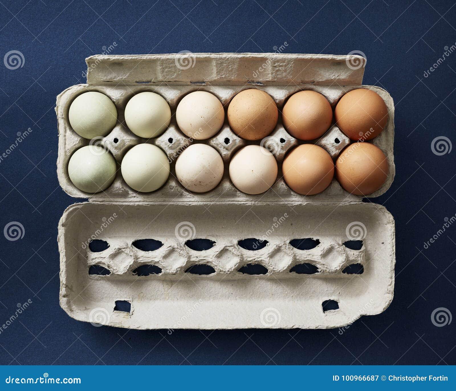 Яичка цыпленка помещенные в заказе цвета в коробке