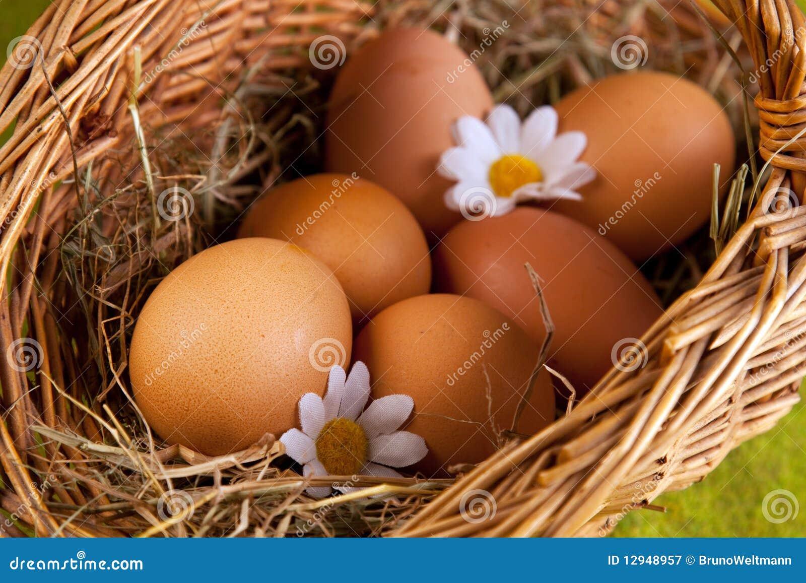 Самые большие яйца у мальчиков фото 7 фотография