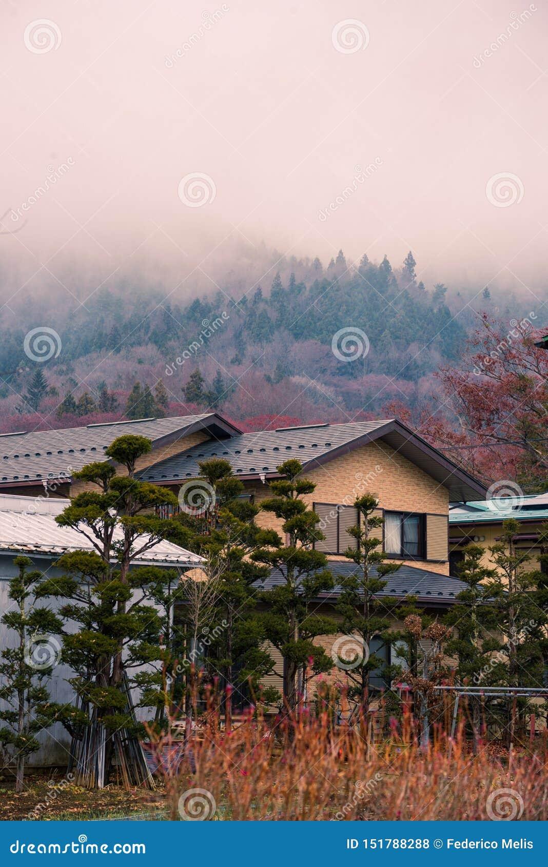 Японский дом около горы