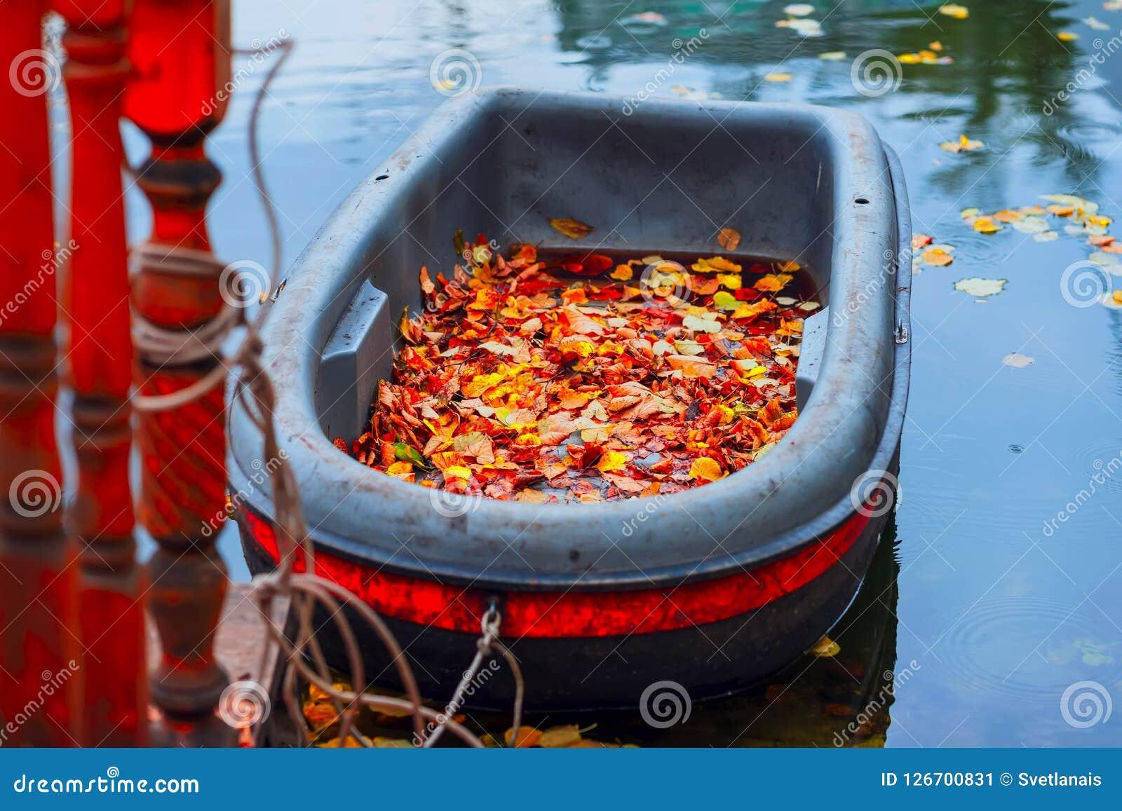 Яркая сцена осени, пакостная шлюпка в пруде осени, упаденные яркие листья на береге, живописные цвета природы