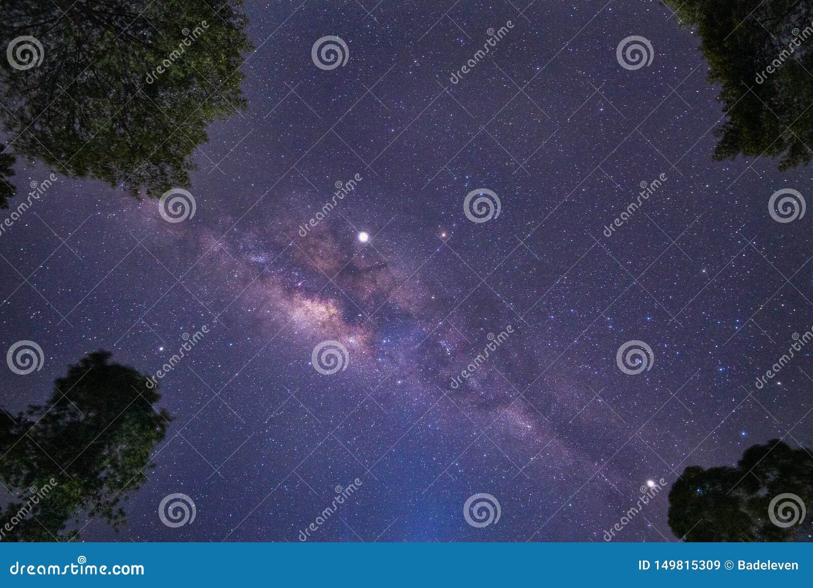 Яркое ночное небо с ясными разбросанными звездами