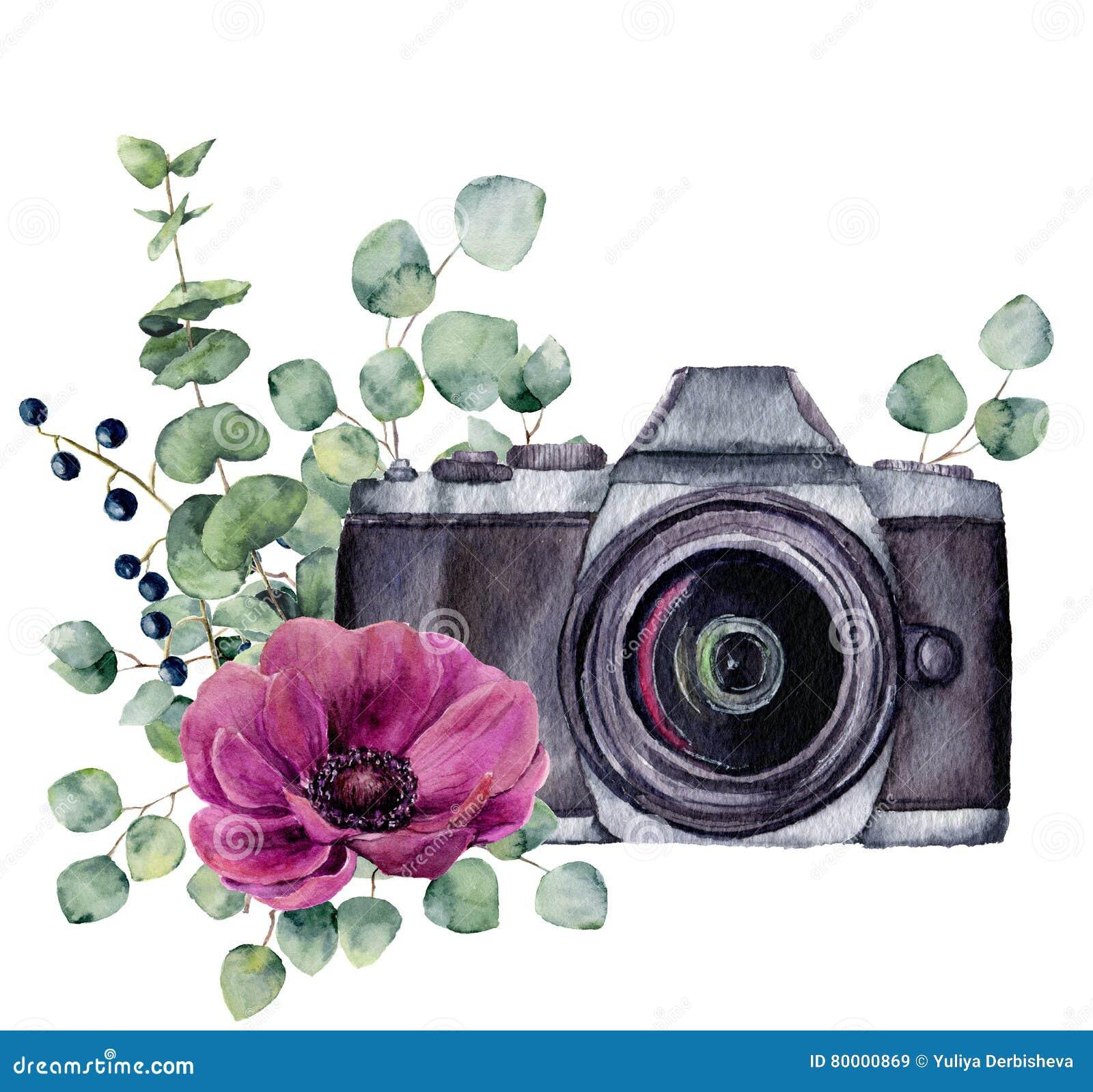 Ярлык фото акварели с цветком и евкалиптом ветреницы Вручите вычерченную камеру фото с флористическим дизайном изолированную на б