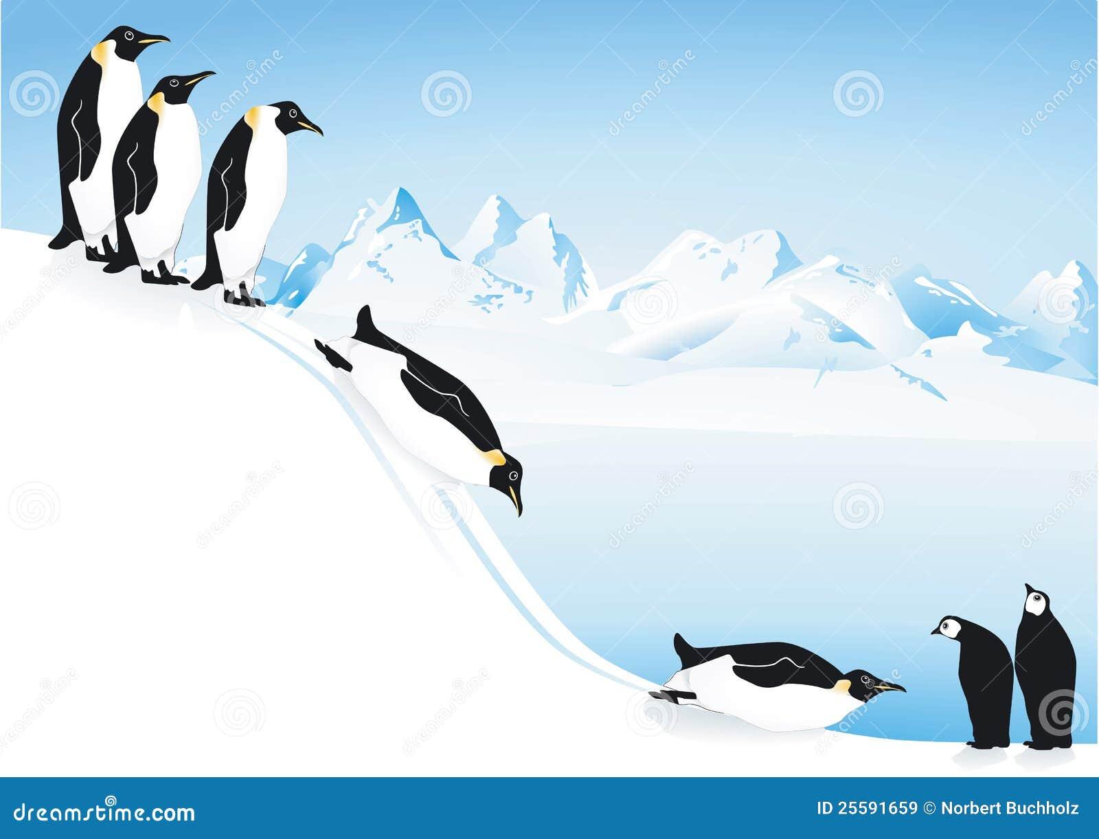 演奏幻灯片的冰企鹅 免版税库存图片