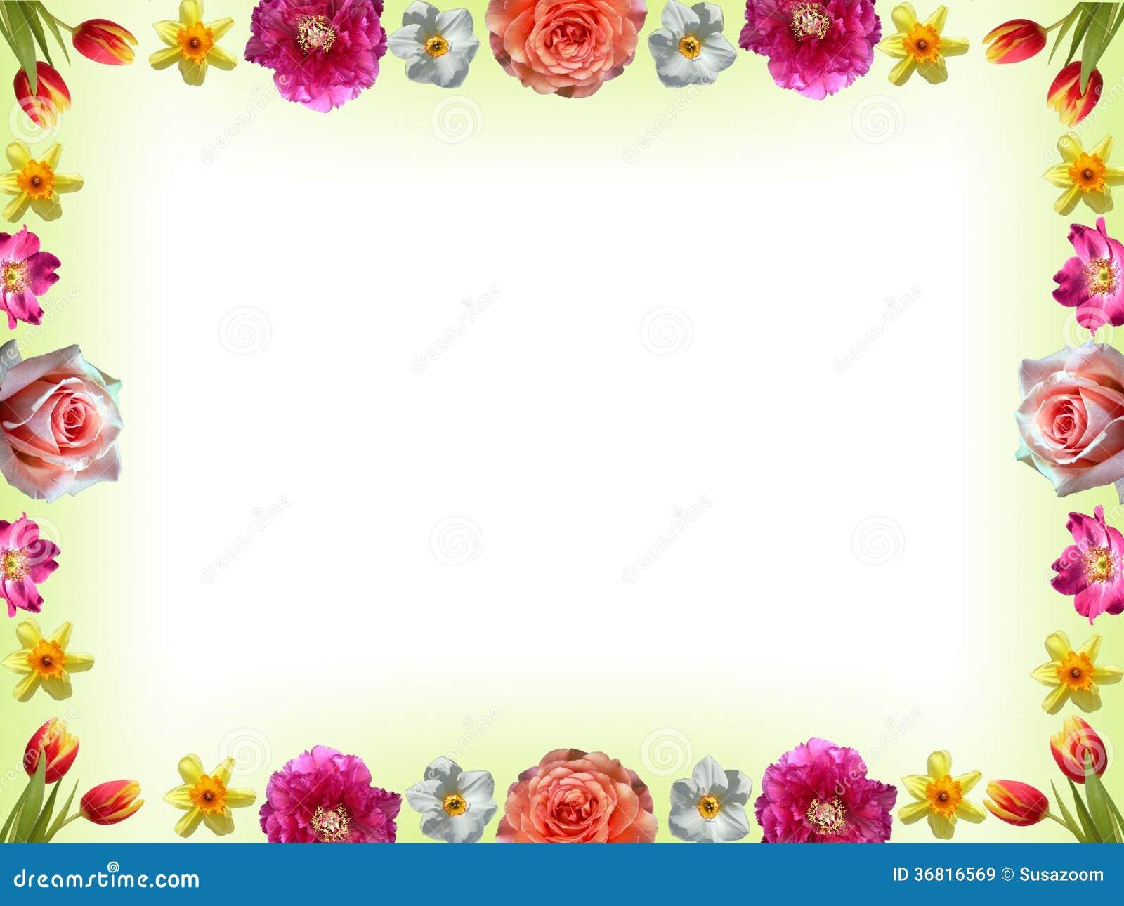与柔和的淡色彩色的春天花的花卉框架