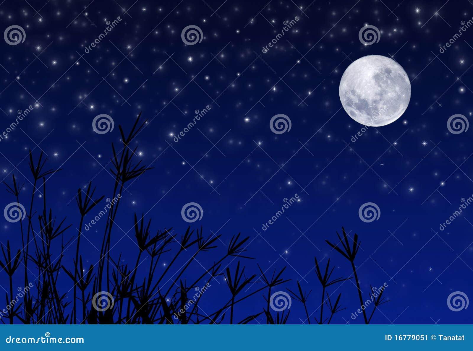 月亮夜空星形 库存图片
