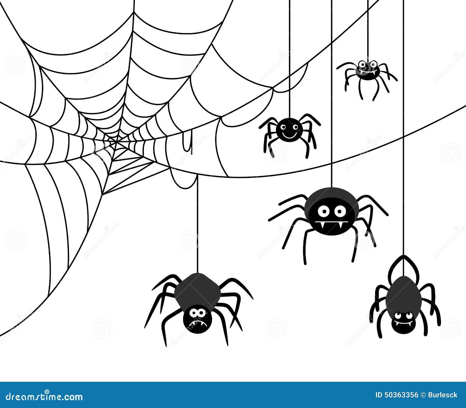 彩虹编织蜘蛛网,五彩编织爬网图片