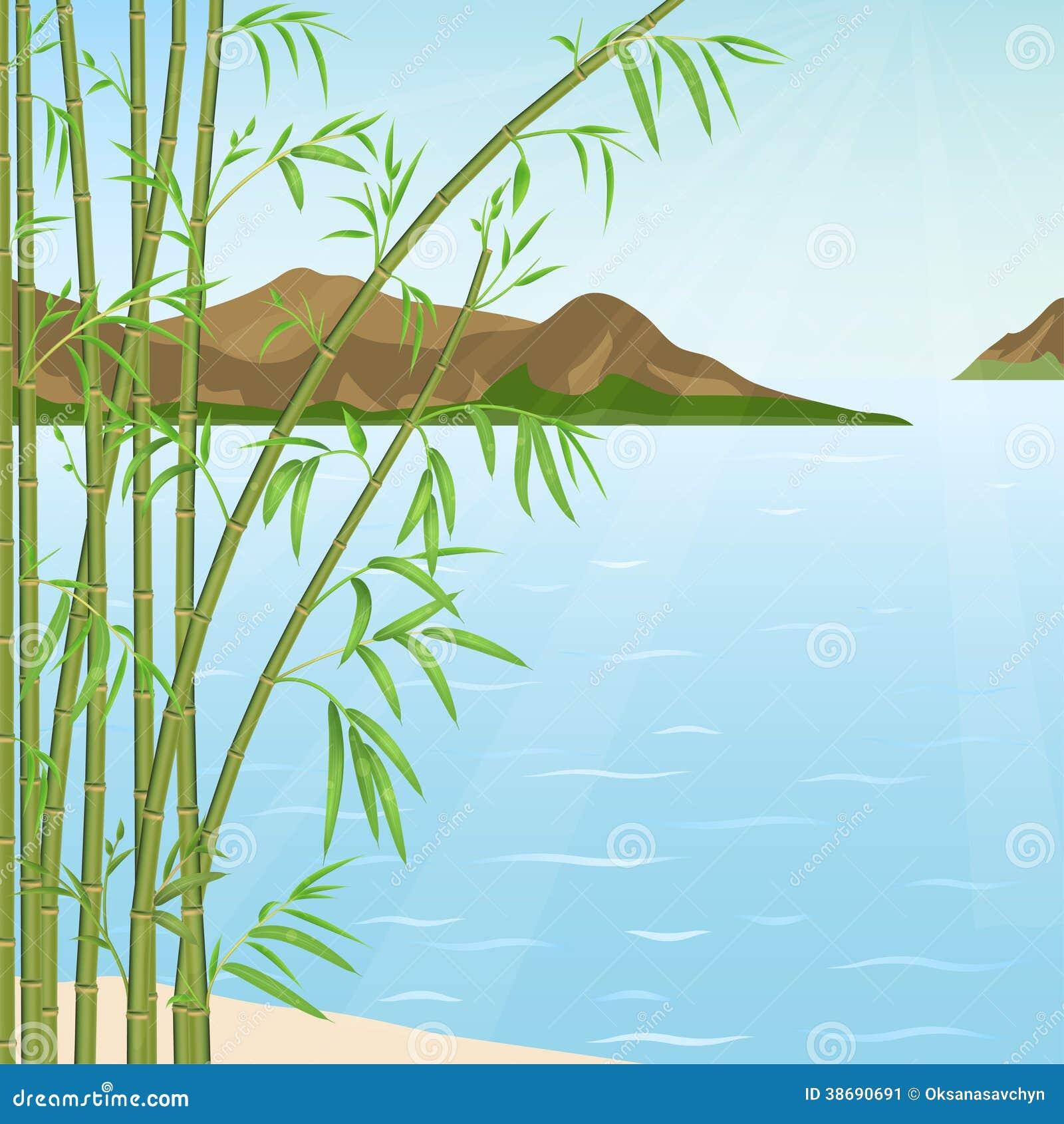 竹子和水 库存图片 - 图片