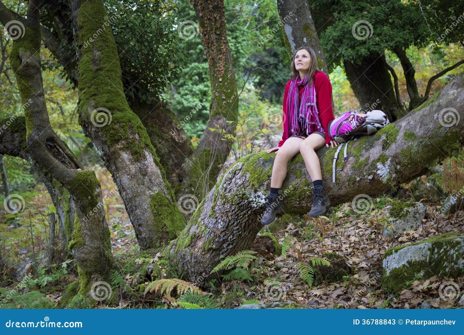 体育装备坐享受一个老自然森林的宁静的在thassos,希腊海岛上的树干.图片