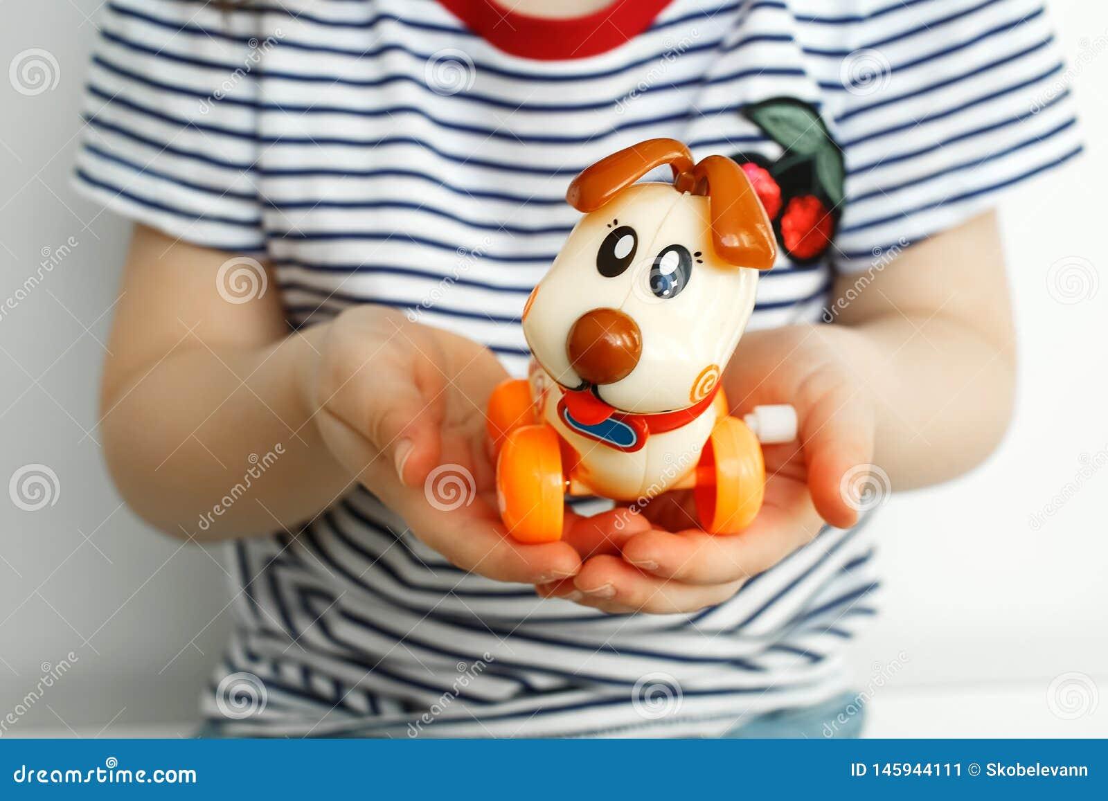 ‹D †de ‹d †de chien de jouet pour enfants dans les mains d un enfant