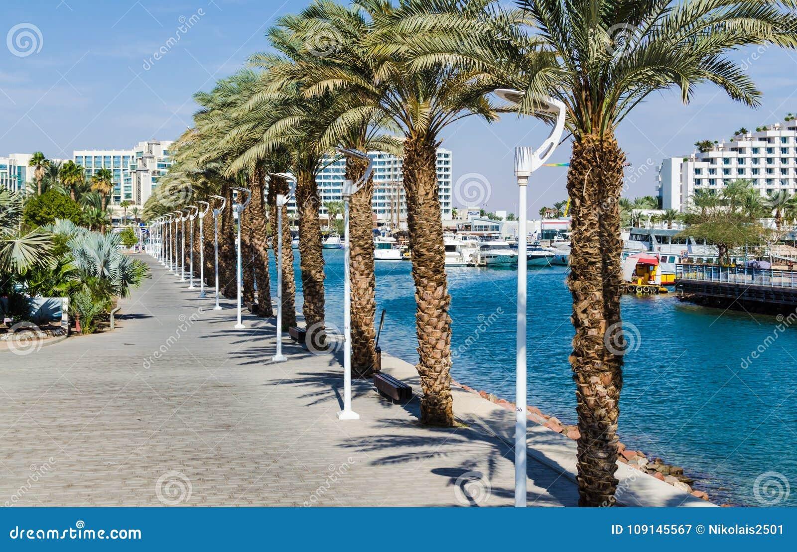 € «7-ое ноября 2017 EILAT, ИЗРАИЛЯ: вход к Марине, с прогулками, современные гостиничные комплексы, ладони