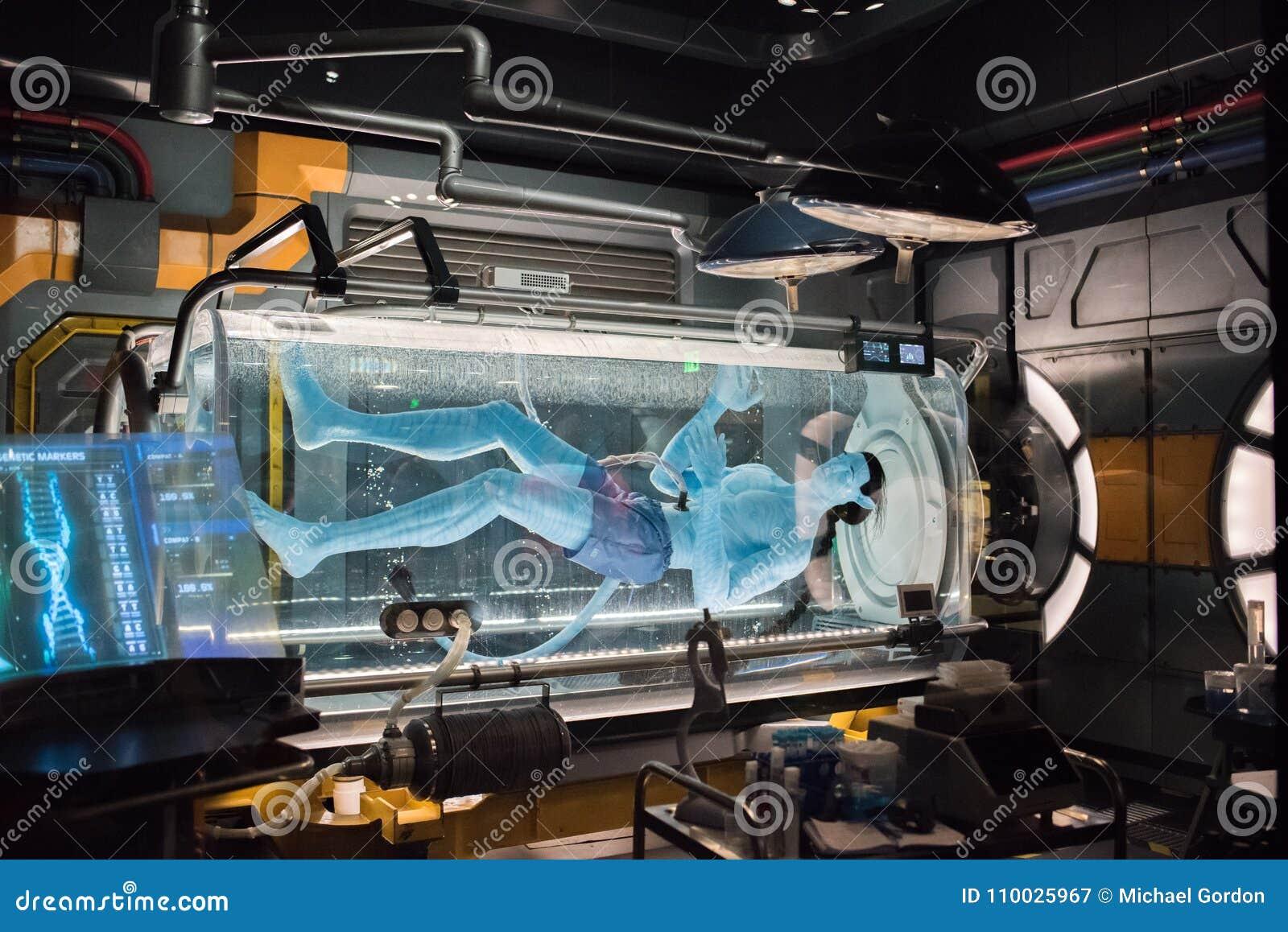 """€ de Pandora """"el mundo de Avatar en el reino animal en Walt Disney World"""