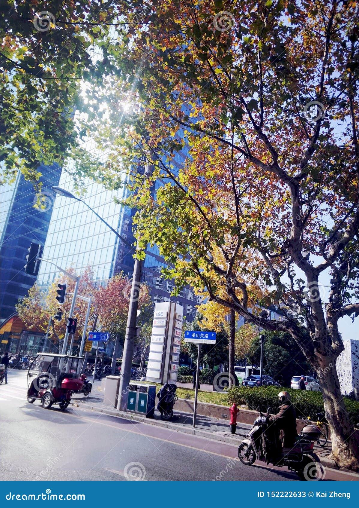 ? WinterMorining del ?de RealChina-UrbanCityShanghai5-