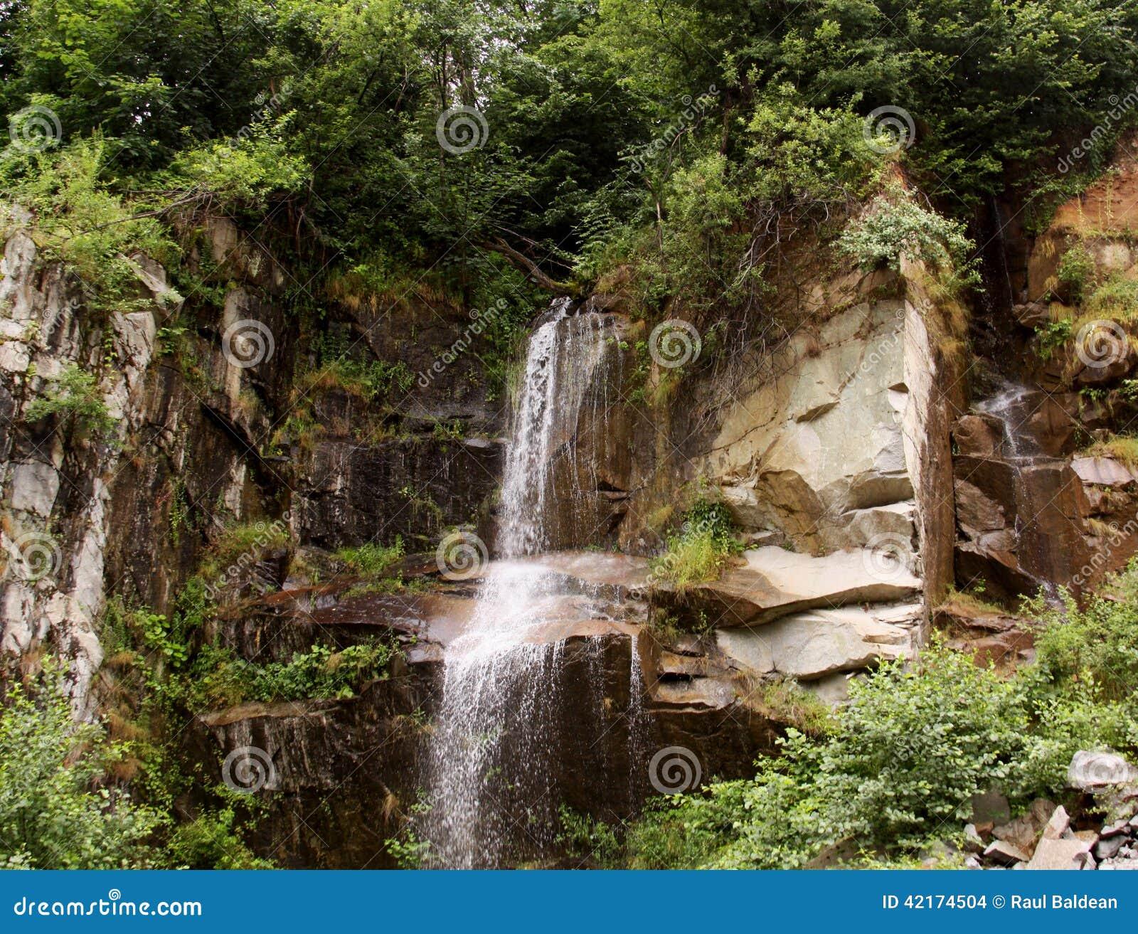 从一个密集的森林出来的瀑布